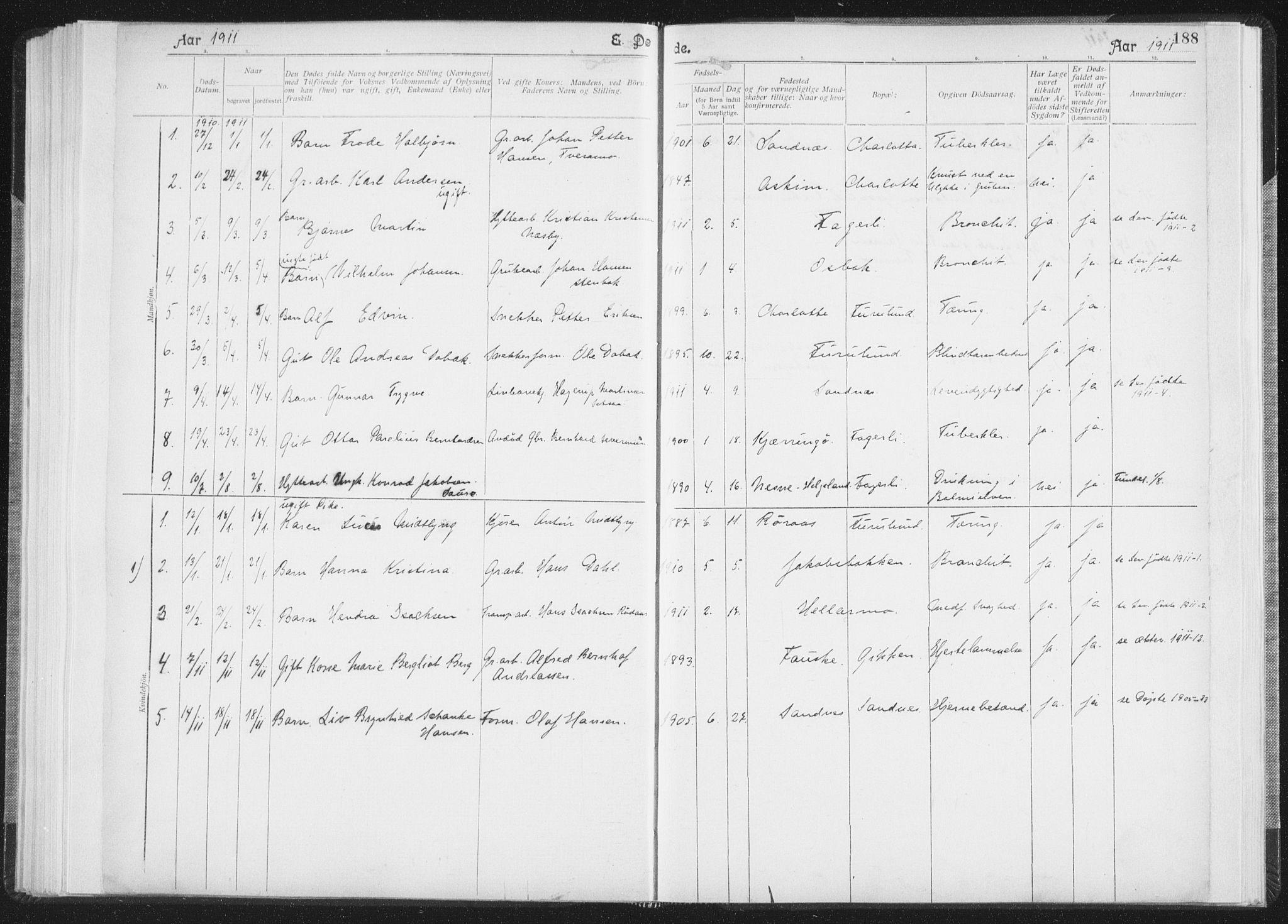 SAT, Ministerialprotokoller, klokkerbøker og fødselsregistre - Nordland, 850/L0711: Residerende kapellans bok nr. 850B01, 1902-1915, s. 188