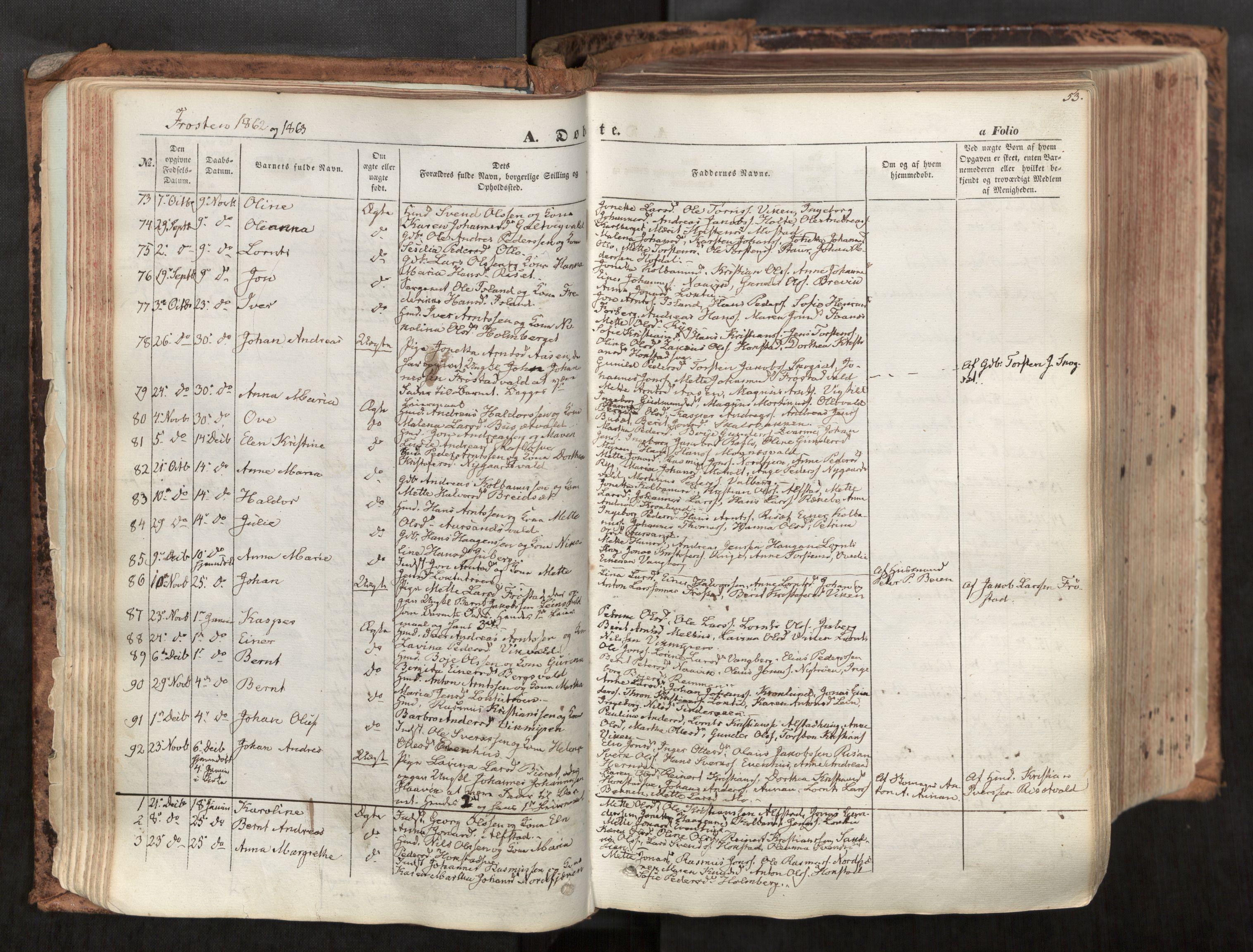 SAT, Ministerialprotokoller, klokkerbøker og fødselsregistre - Nord-Trøndelag, 713/L0116: Ministerialbok nr. 713A07, 1850-1877, s. 53