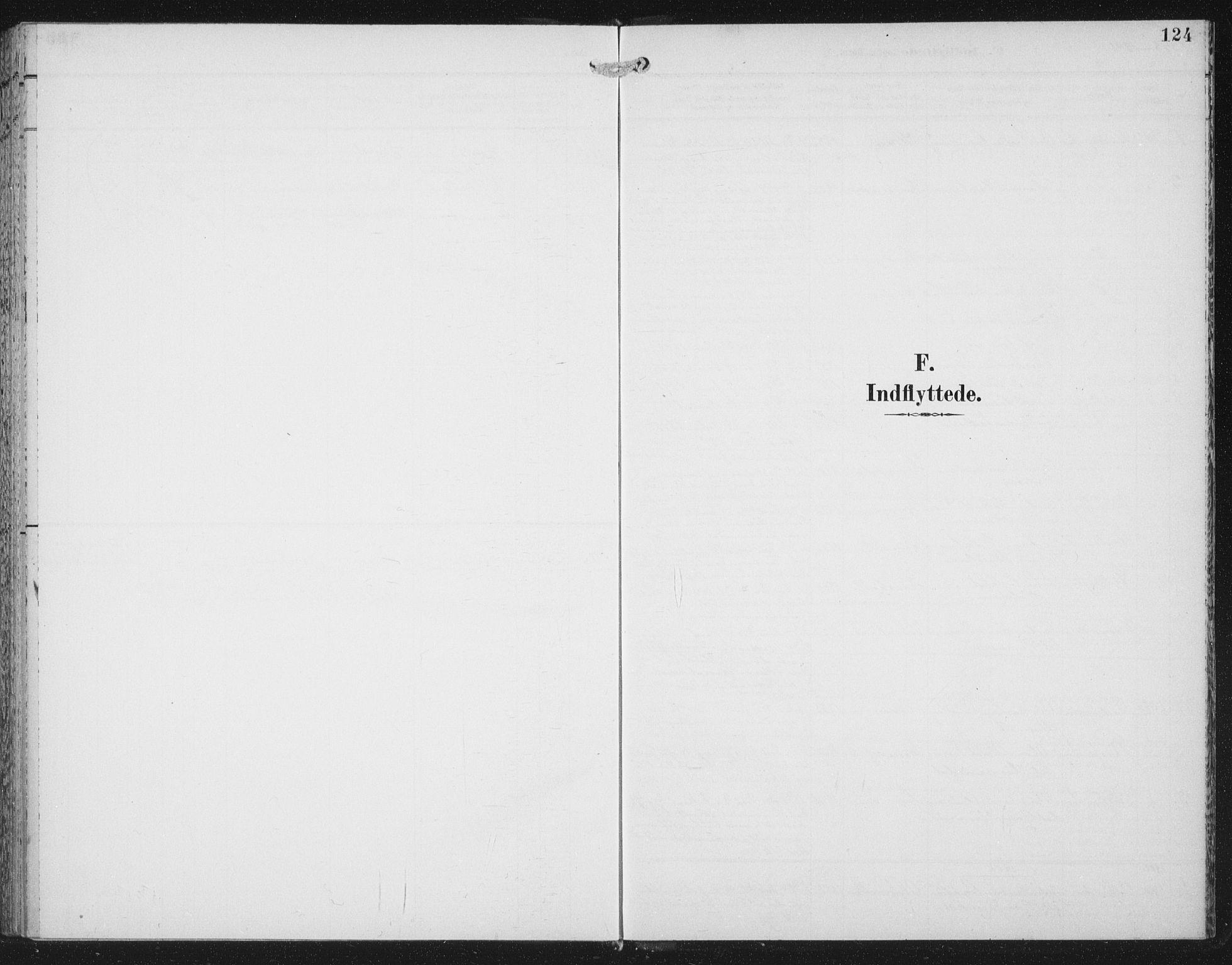 SAT, Ministerialprotokoller, klokkerbøker og fødselsregistre - Nord-Trøndelag, 702/L0024: Ministerialbok nr. 702A02, 1898-1914, s. 124