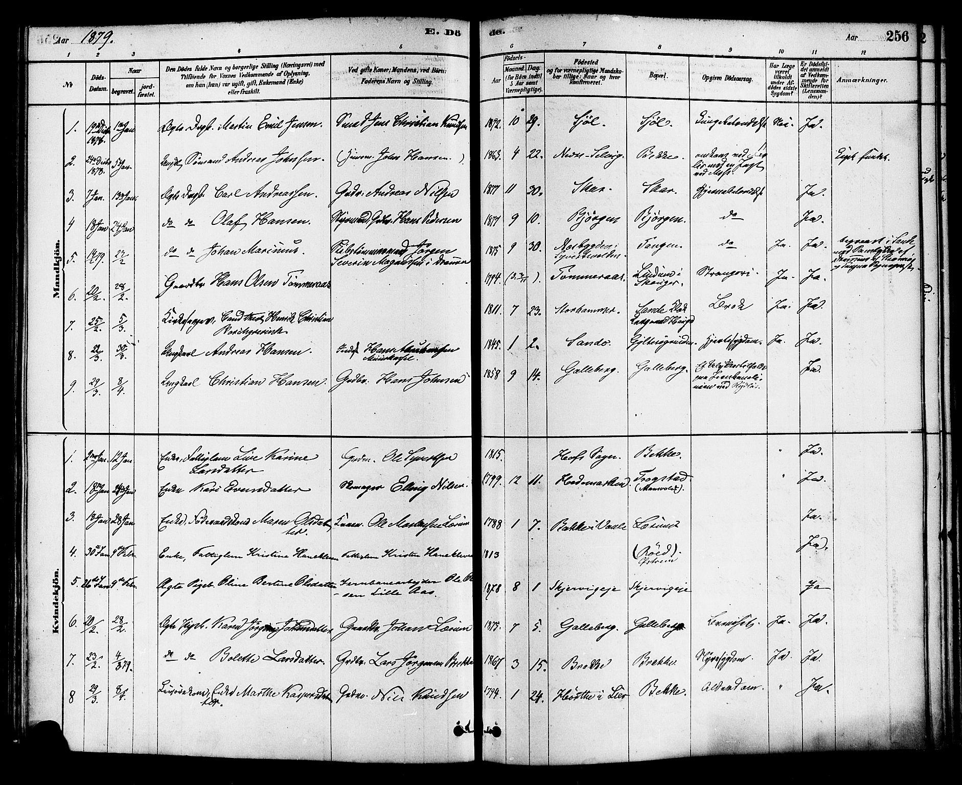 SAKO, Sande Kirkebøker, F/Fa/L0006: Ministerialbok nr. 6, 1878-1888, s. 256