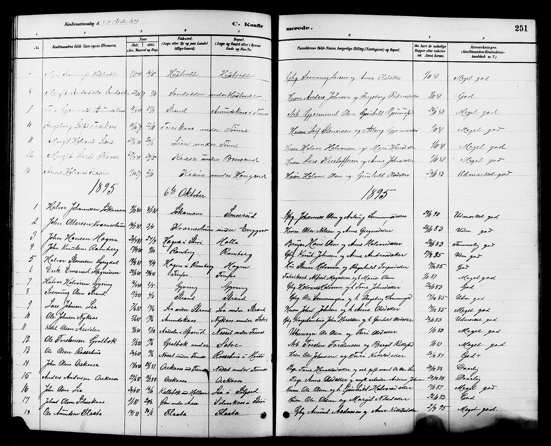 SAKO, Heddal kirkebøker, G/Ga/L0002: Klokkerbok nr. I 2, 1879-1908, s. 251