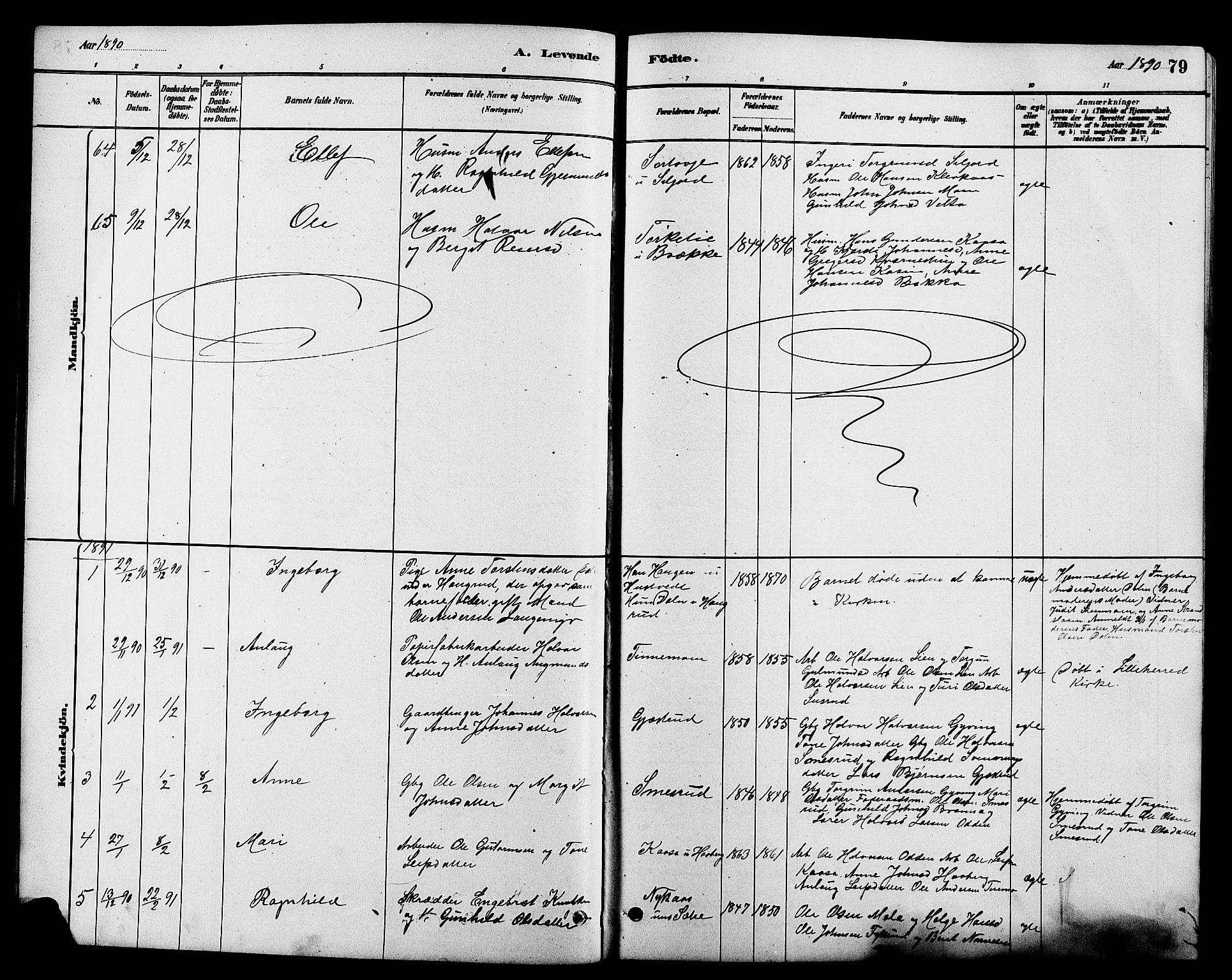 SAKO, Heddal kirkebøker, G/Ga/L0002: Klokkerbok nr. I 2, 1879-1908, s. 79