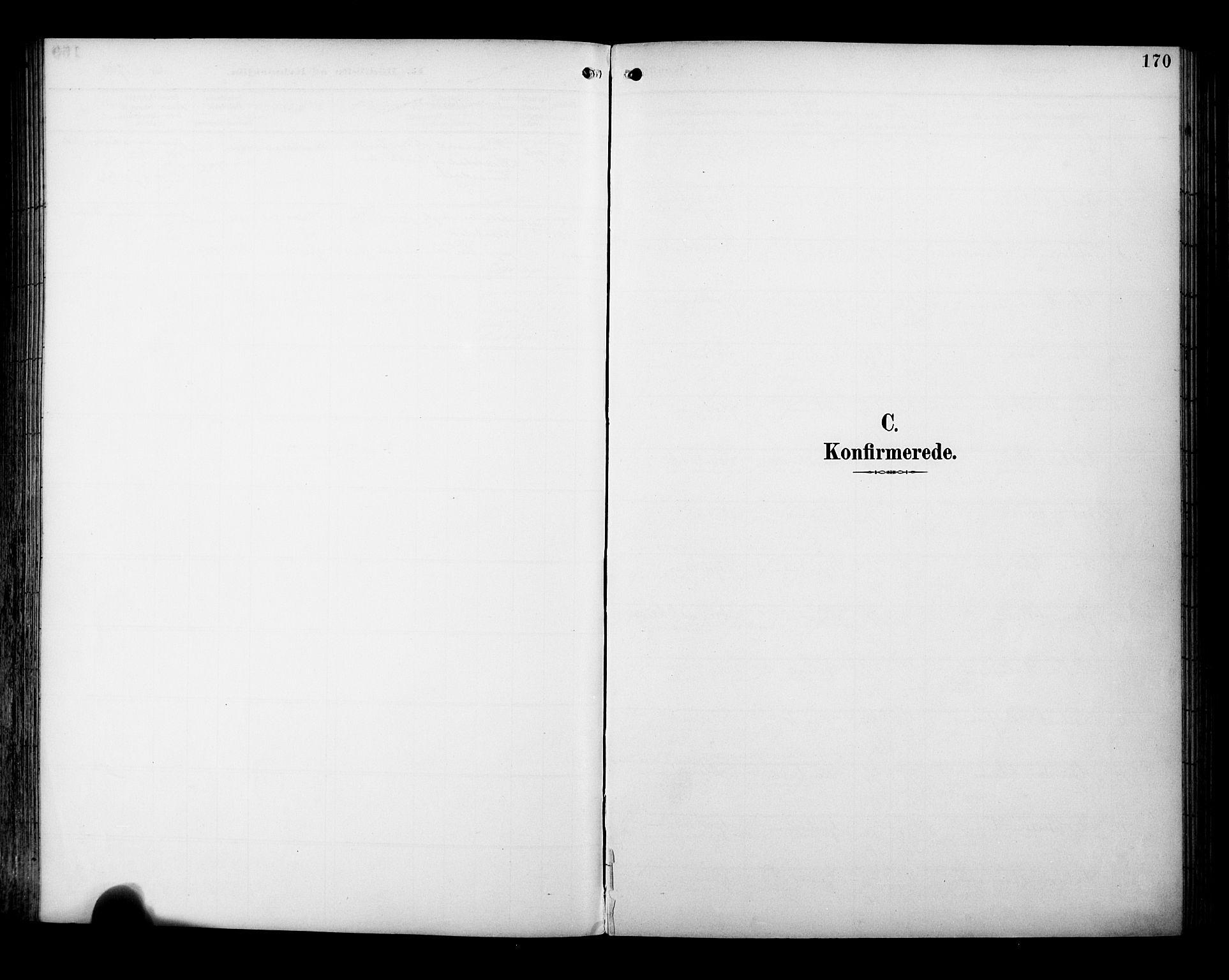 SAT, Ministerialprotokoller, klokkerbøker og fødselsregistre - Sør-Trøndelag, 695/L1149: Ministerialbok nr. 695A09, 1891-1902, s. 170