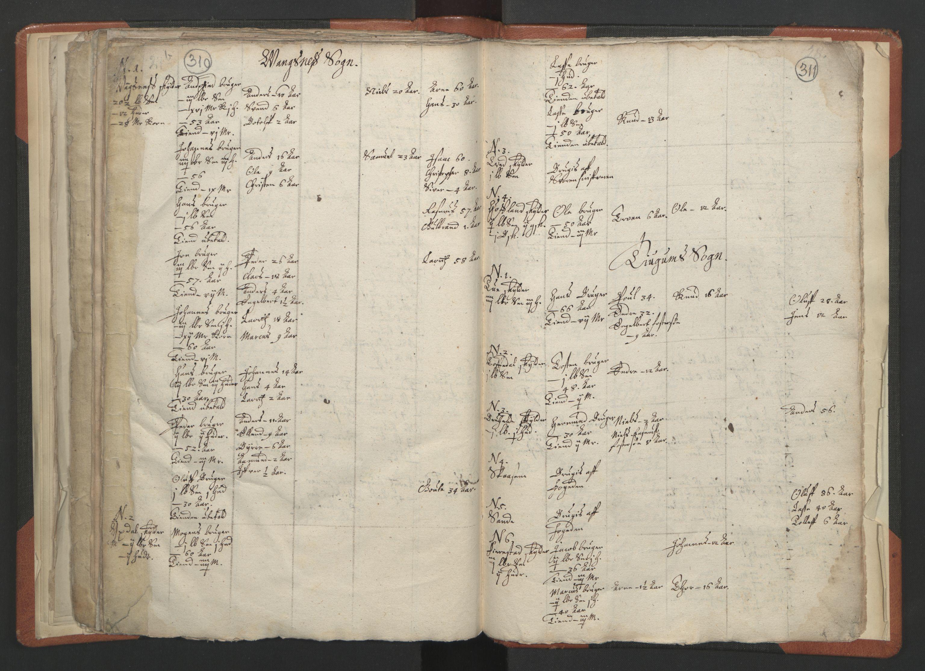 RA, Sogneprestenes manntall 1664-1666, nr. 23: Sogn prosti, 1664-1666, s. 310-311