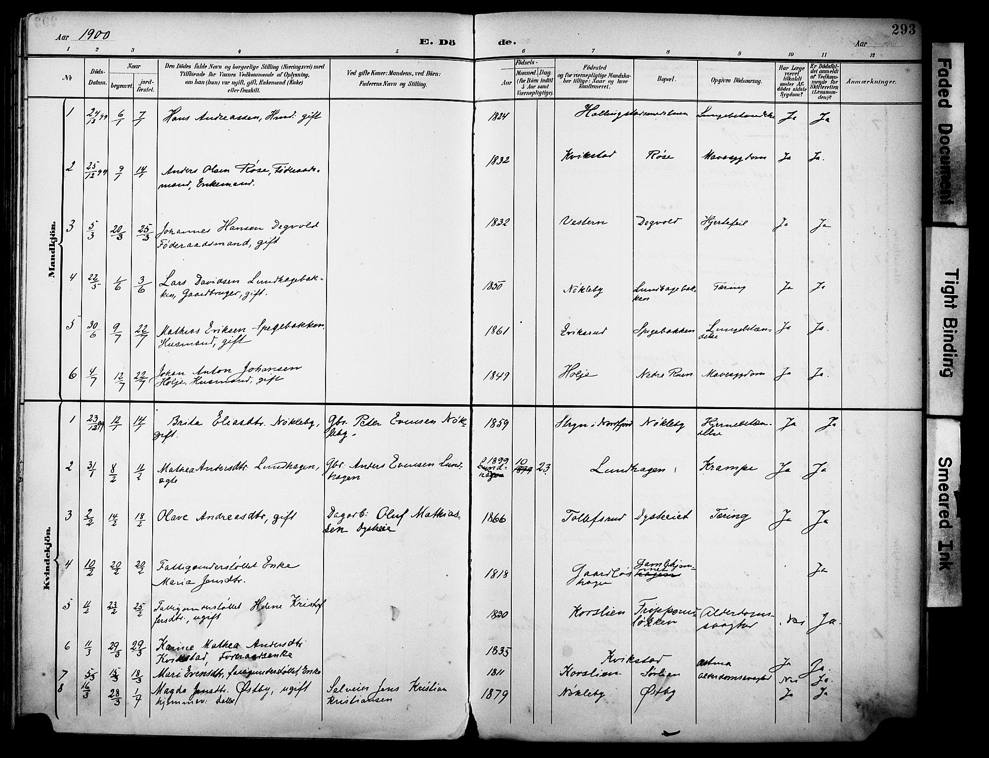 SAH, Vestre Toten prestekontor, H/Ha/Haa/L0013: Ministerialbok nr. 13, 1895-1911, s. 293