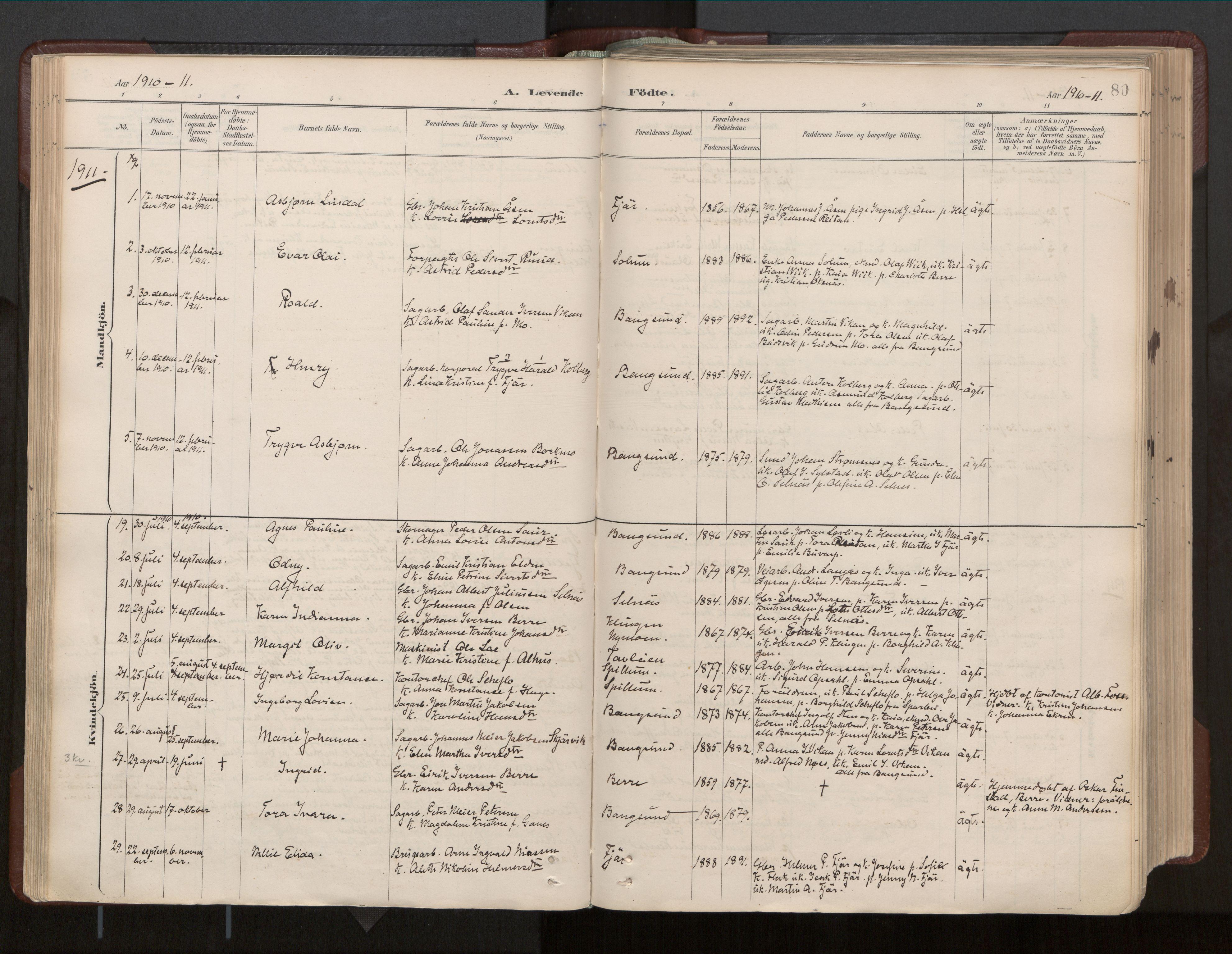 SAT, Ministerialprotokoller, klokkerbøker og fødselsregistre - Nord-Trøndelag, 770/L0589: Ministerialbok nr. 770A03, 1887-1929, s. 80