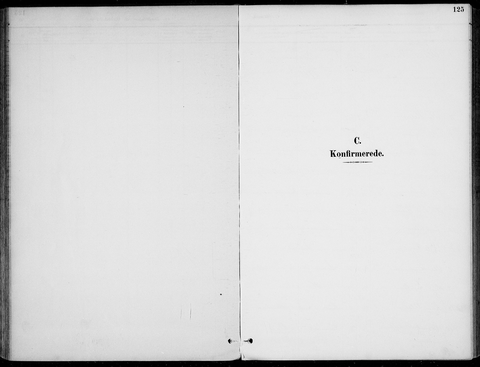 SAKO, Sigdal kirkebøker, F/Fb/L0001: Ministerialbok nr. II 1, 1888-1900, s. 125