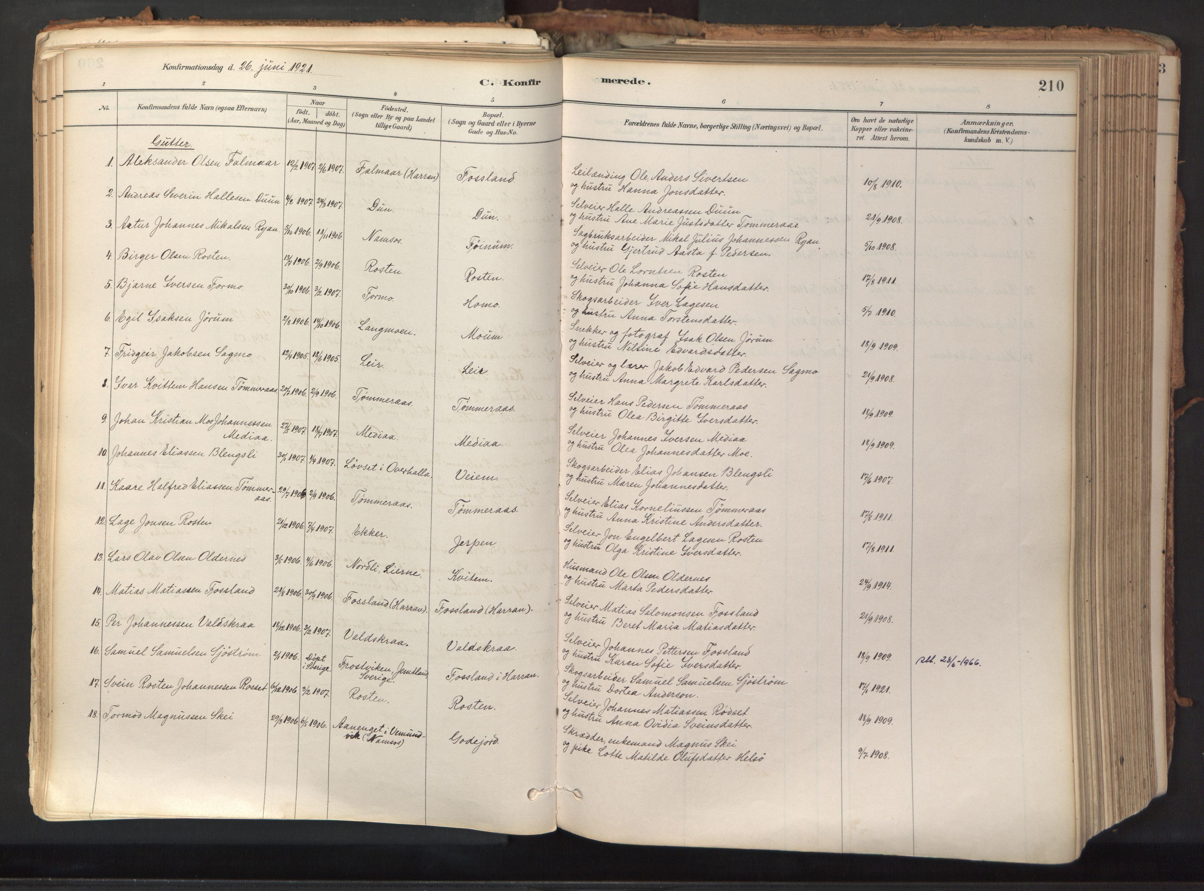 SAT, Ministerialprotokoller, klokkerbøker og fødselsregistre - Nord-Trøndelag, 758/L0519: Ministerialbok nr. 758A04, 1880-1926, s. 210