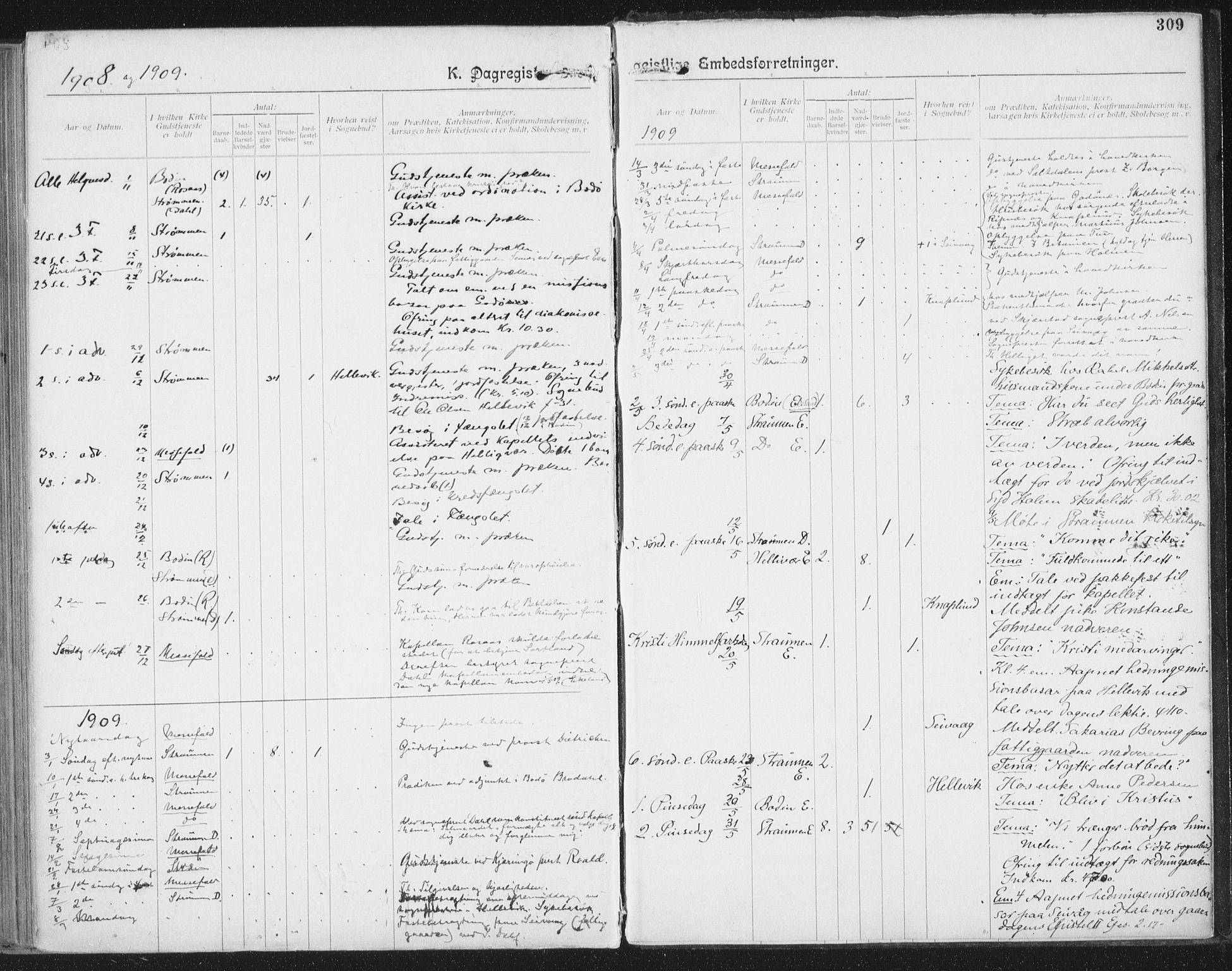 SAT, Ministerialprotokoller, klokkerbøker og fødselsregistre - Nordland, 804/L0081: Ministerialbok nr. 804A02, 1901-1915, s. 309