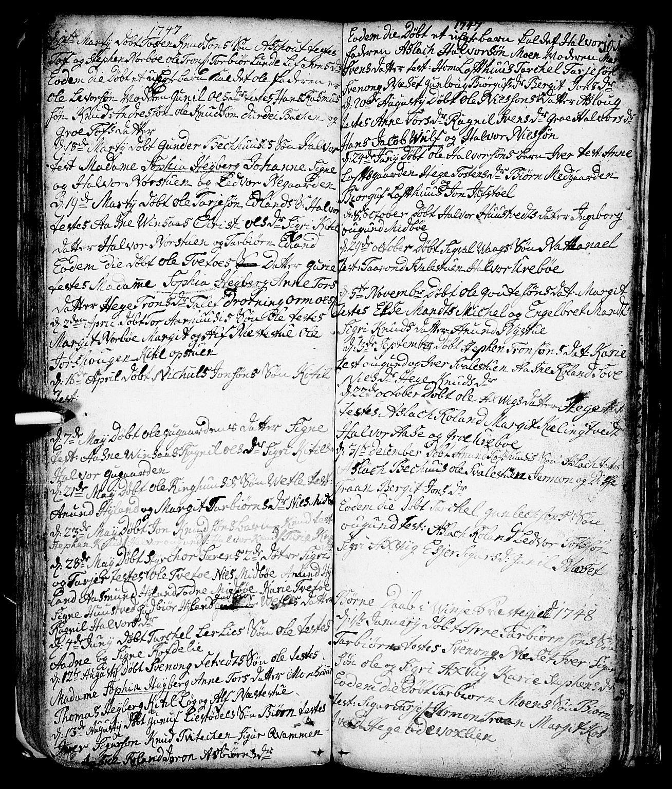 SAKO, Vinje kirkebøker, F/Fa/L0001: Ministerialbok nr. I 1, 1717-1766, s. 101