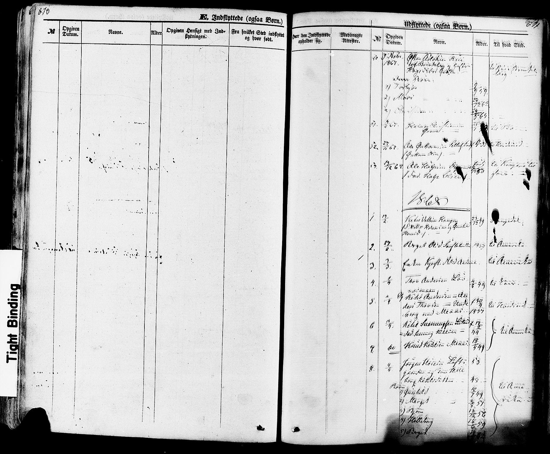 SAKO, Seljord kirkebøker, F/Fa/L0013: Ministerialbok nr. I 13, 1866-1876, s. 670-671