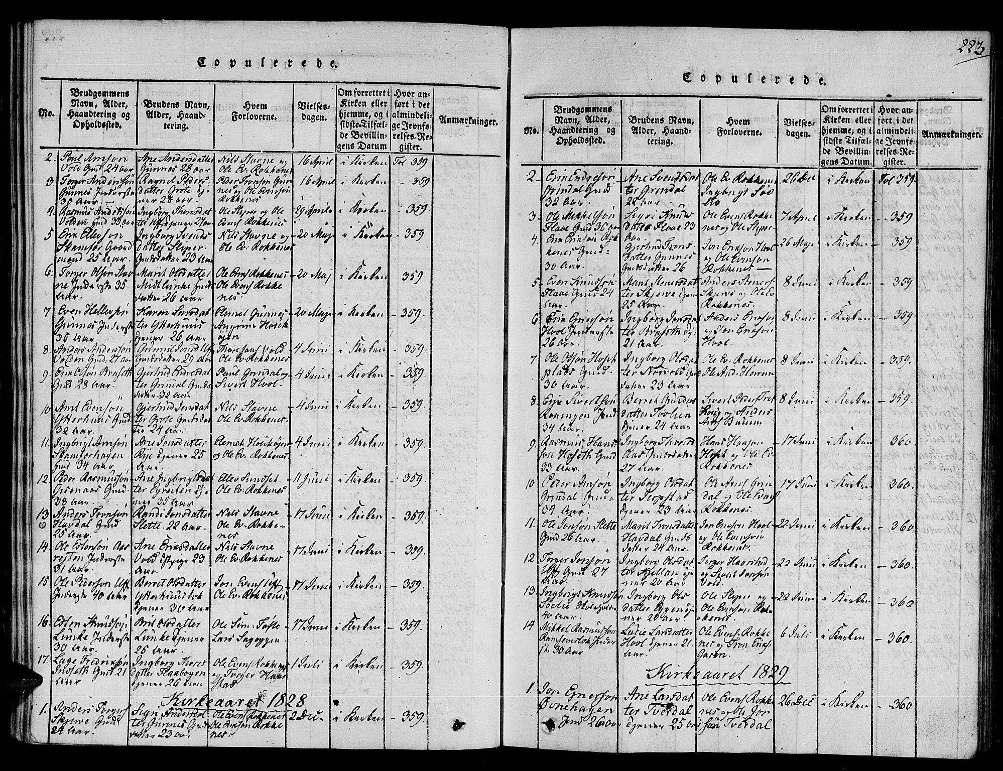 SAT, Ministerialprotokoller, klokkerbøker og fødselsregistre - Sør-Trøndelag, 672/L0854: Ministerialbok nr. 672A06 /2, 1816-1829, s. 223