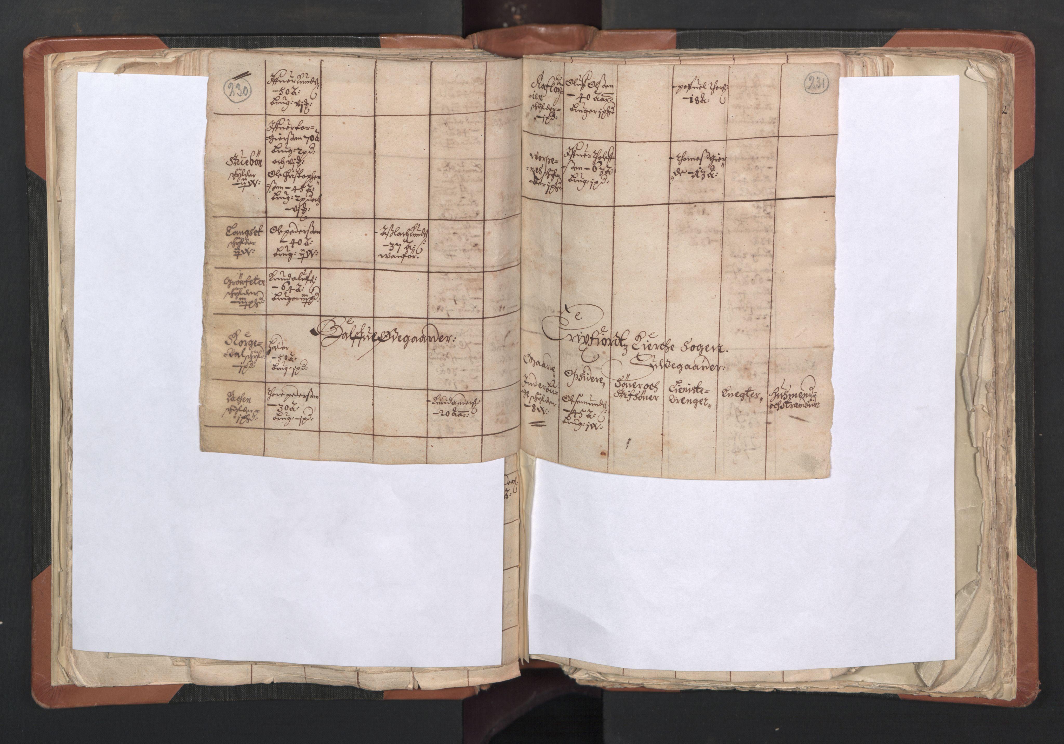 RA, Sogneprestenes manntall 1664-1666, nr. 27: Romsdal prosti, 1664-1666, s. 230-231