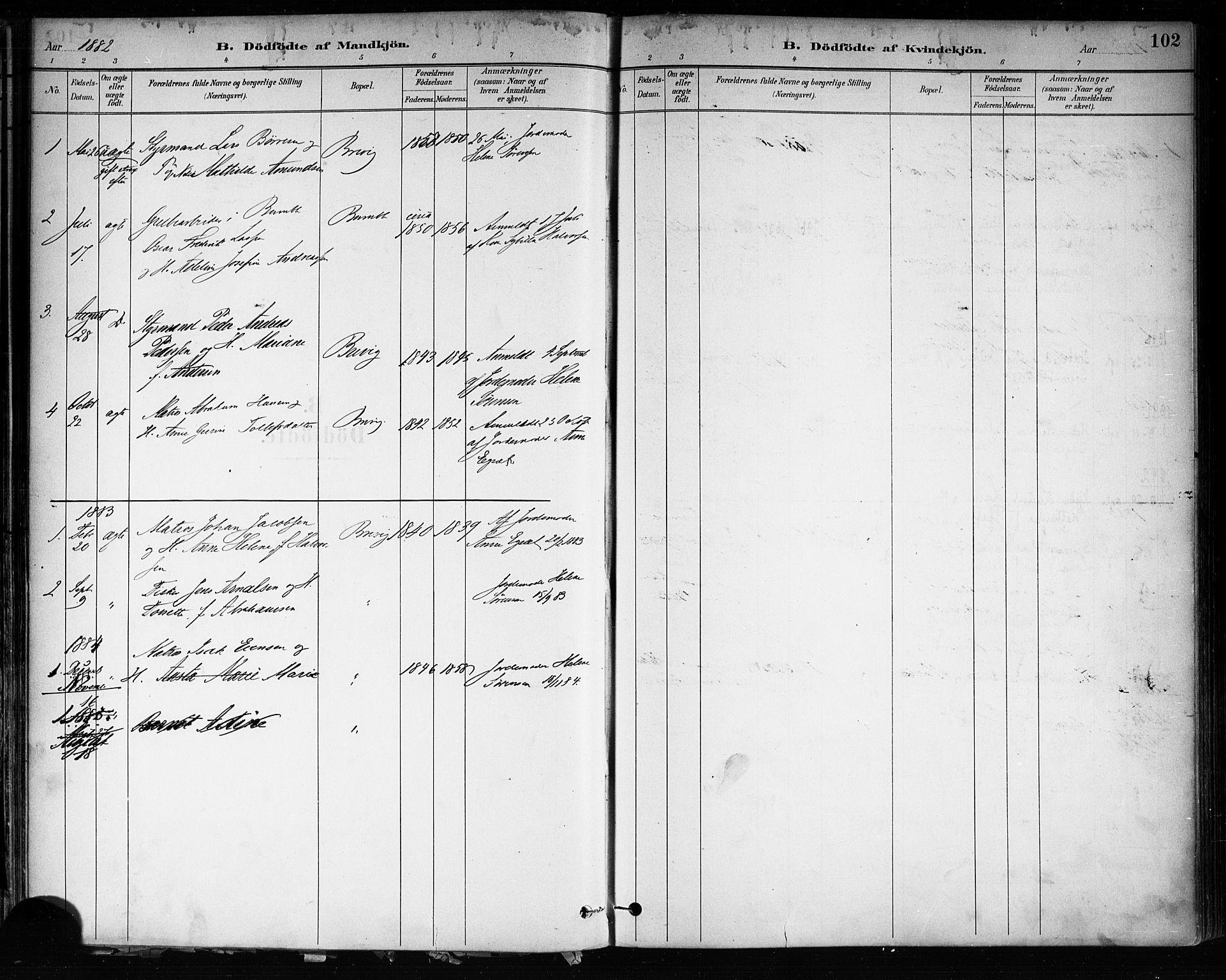 SAKO, Brevik kirkebøker, F/Fa/L0007: Ministerialbok nr. 7, 1882-1900, s. 102