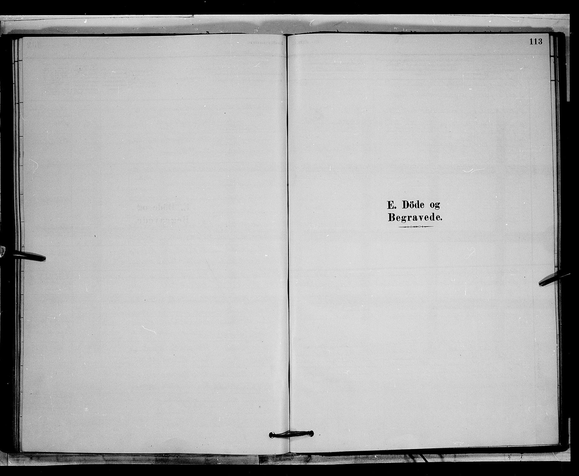 SAH, Øyer prestekontor, Klokkerbok nr. 2, 1878-1896, s. 113