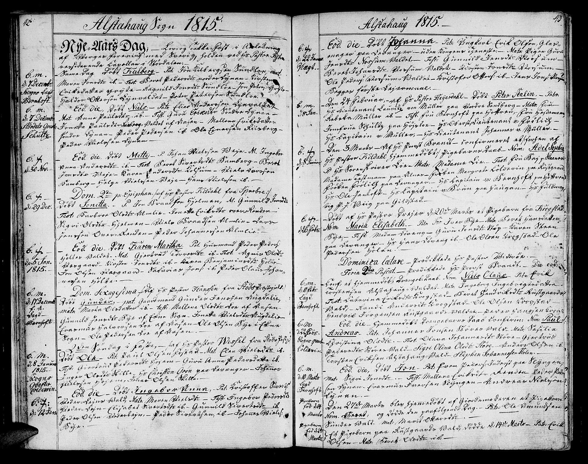 SAT, Ministerialprotokoller, klokkerbøker og fødselsregistre - Nord-Trøndelag, 717/L0145: Ministerialbok nr. 717A03 /1, 1810-1815, s. 42-43