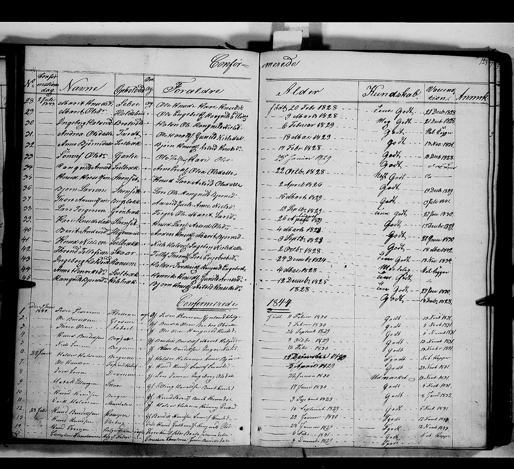 SAH, Nord-Aurdal prestekontor, Ministerialbok nr. 7, 1842-1863, s. 123