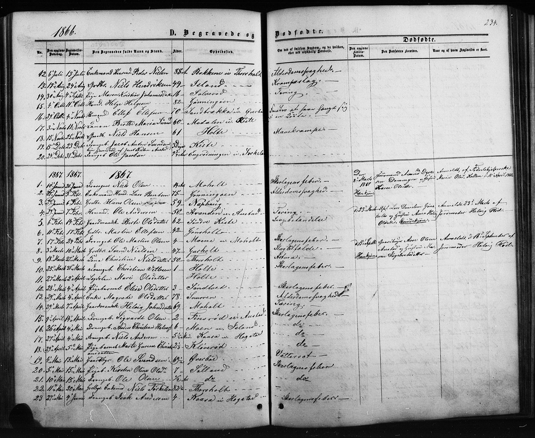 SAKO, Siljan kirkebøker, G/Ga/L0002: Klokkerbok nr. 2, 1864-1908, s. 234
