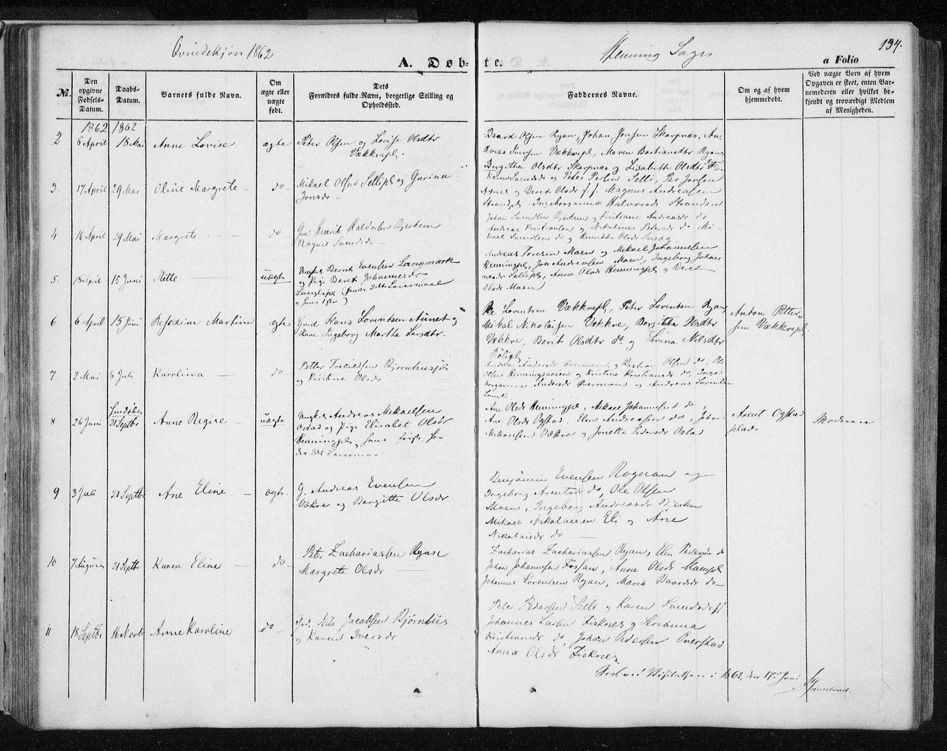 SAT, Ministerialprotokoller, klokkerbøker og fødselsregistre - Nord-Trøndelag, 735/L0342: Ministerialbok nr. 735A07 /3, 1849-1862, s. 134