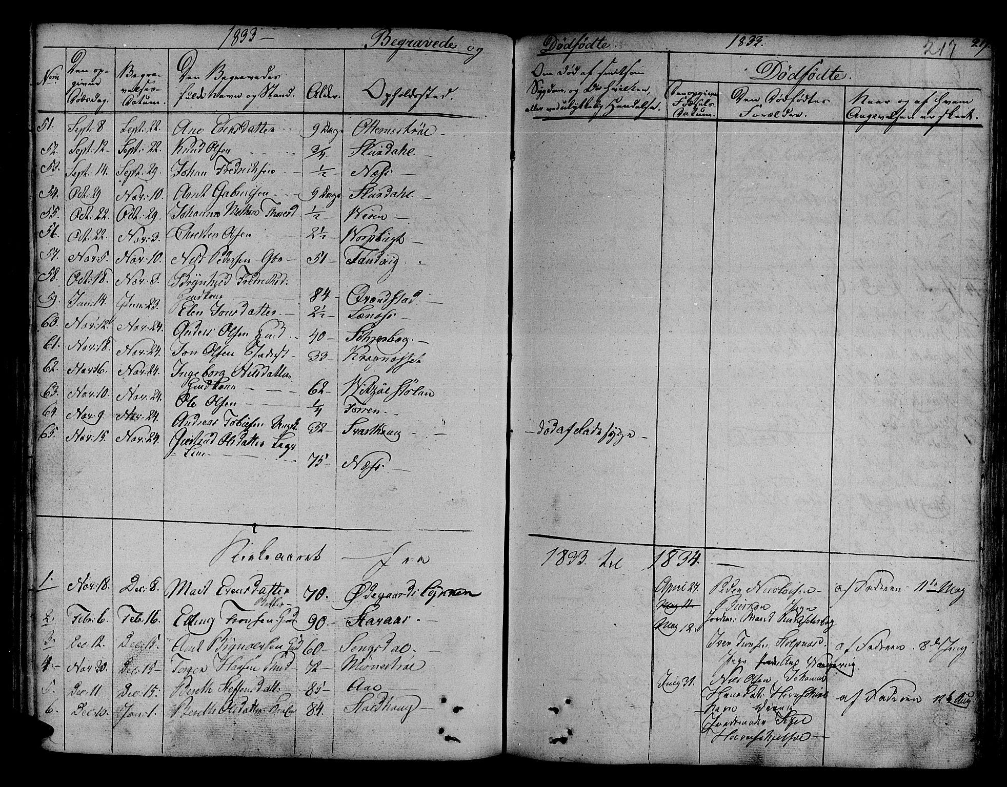 SAT, Ministerialprotokoller, klokkerbøker og fødselsregistre - Sør-Trøndelag, 630/L0492: Ministerialbok nr. 630A05, 1830-1840, s. 217