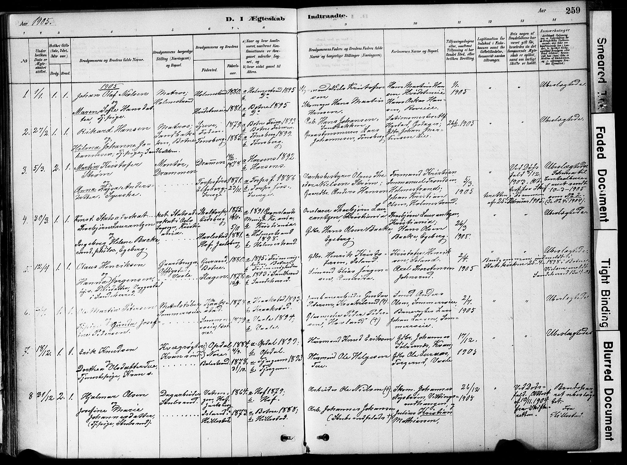 SAKO, Botne kirkebøker, F/Fa/L0007: Ministerialbok nr. I 7, 1878-1910, s. 259