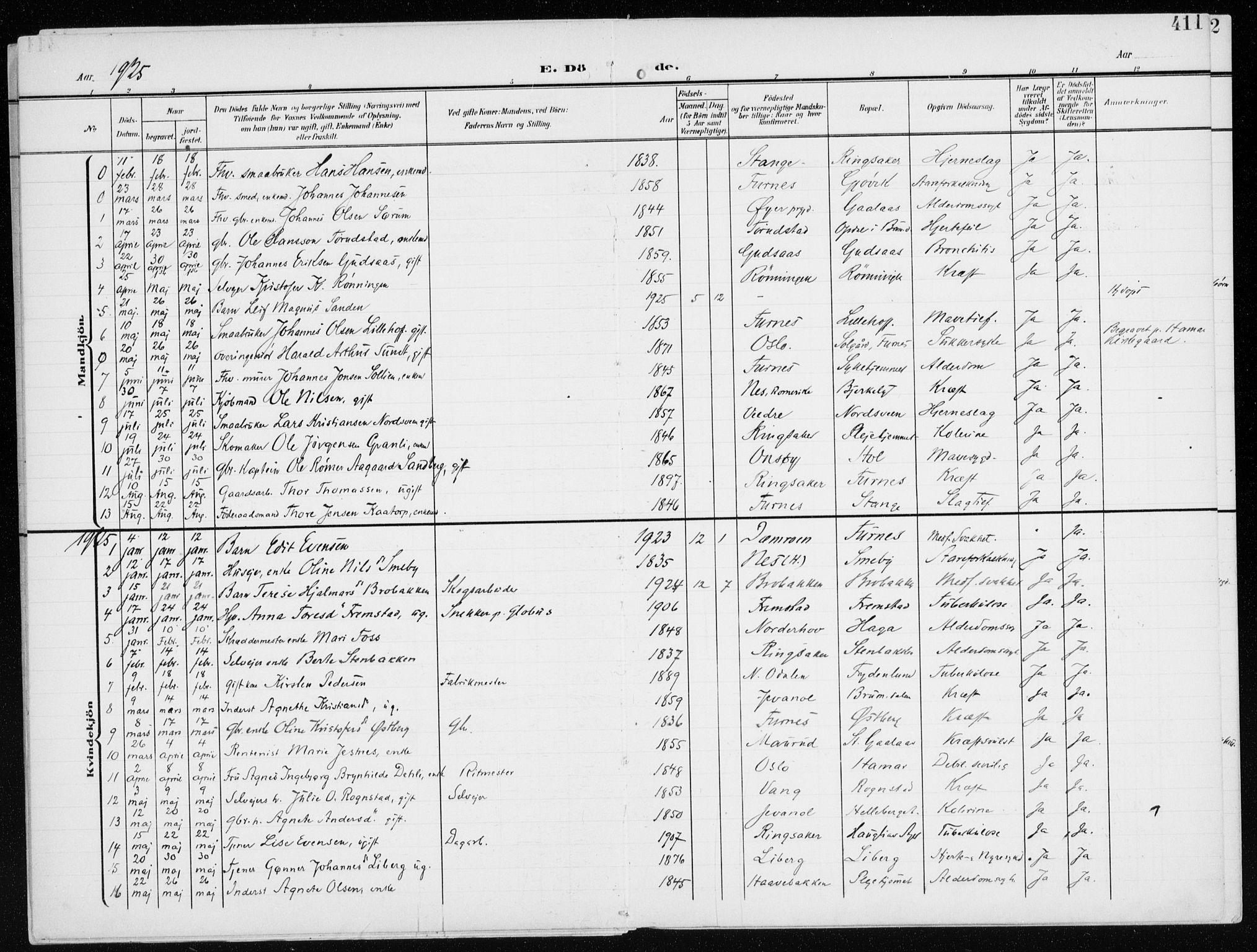 SAH, Furnes prestekontor, K/Ka/L0001: Ministerialbok nr. 1, 1907-1935, s. 411