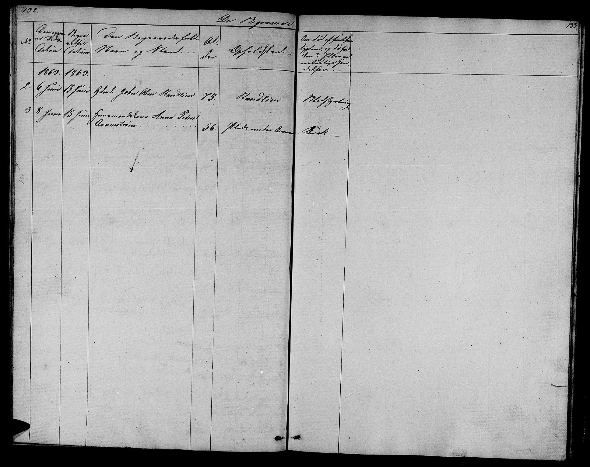 SAT, Ministerialprotokoller, klokkerbøker og fødselsregistre - Sør-Trøndelag, 608/L0339: Klokkerbok nr. 608C05, 1844-1863, s. 132-133