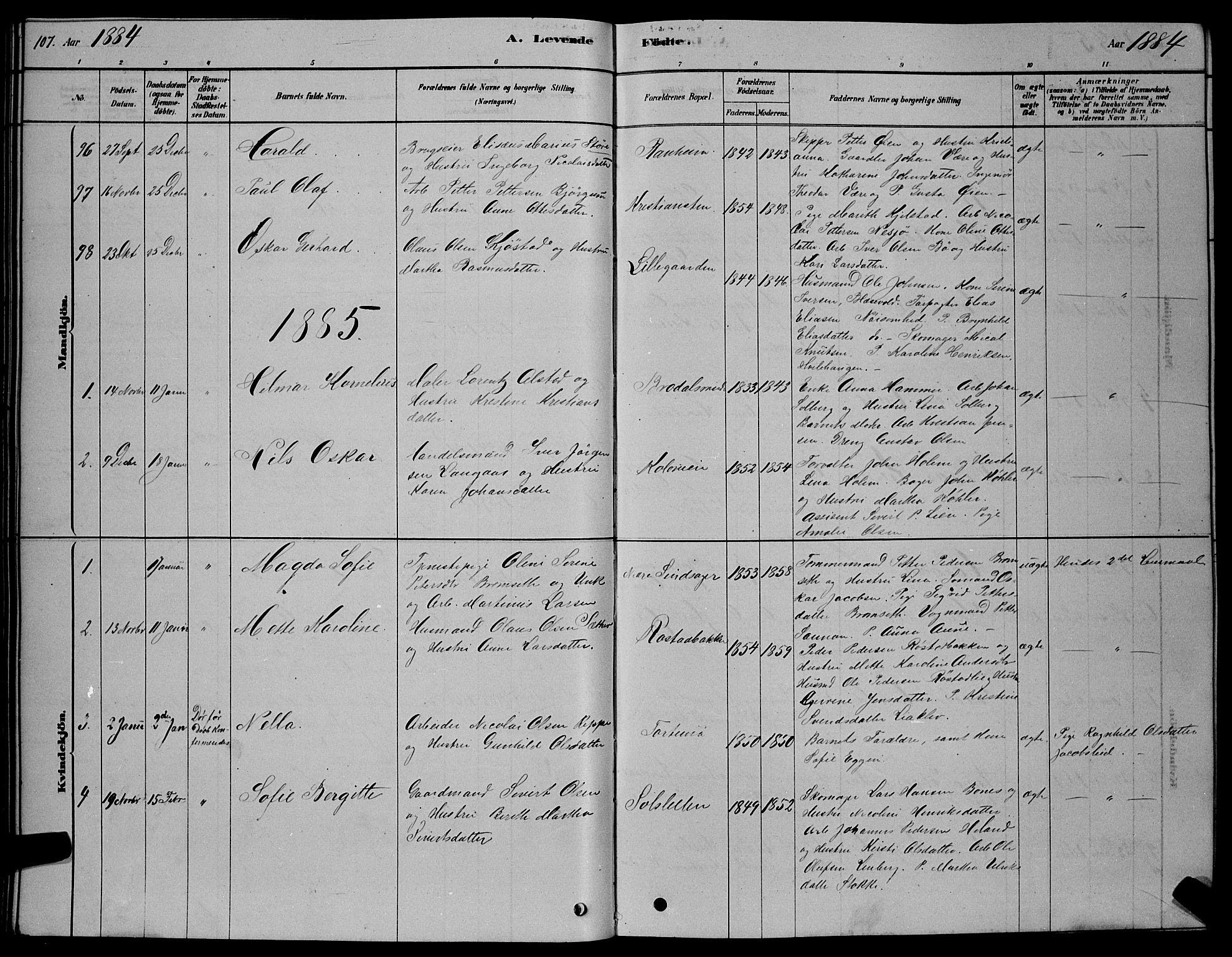 SAT, Ministerialprotokoller, klokkerbøker og fødselsregistre - Sør-Trøndelag, 606/L0312: Klokkerbok nr. 606C08, 1878-1894, s. 107