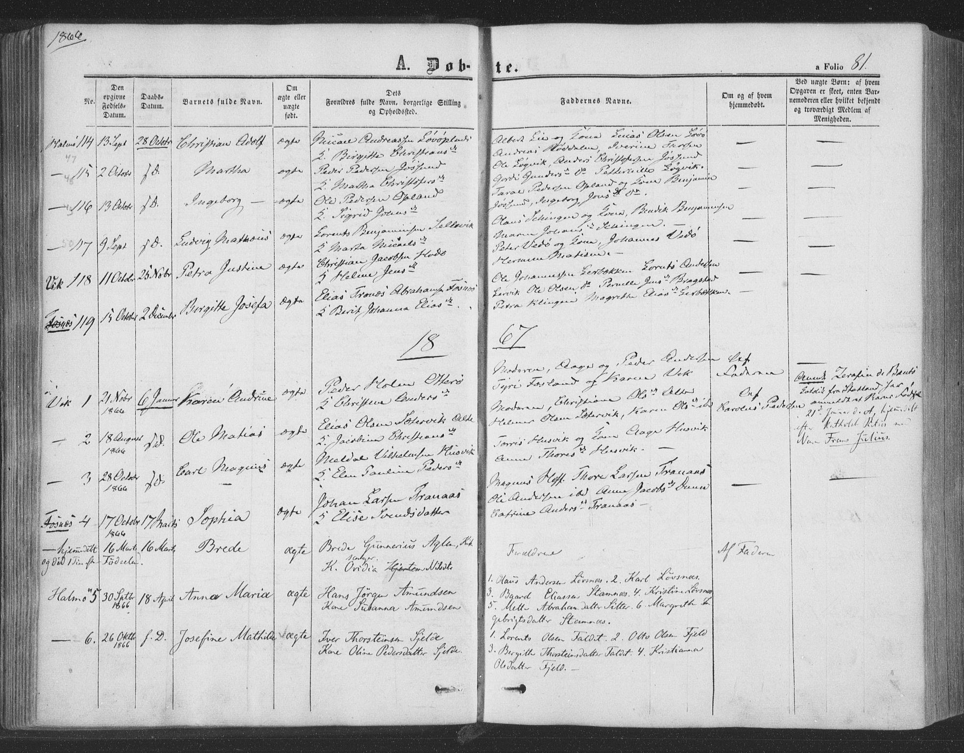 SAT, Ministerialprotokoller, klokkerbøker og fødselsregistre - Nord-Trøndelag, 773/L0615: Ministerialbok nr. 773A06, 1857-1870, s. 81