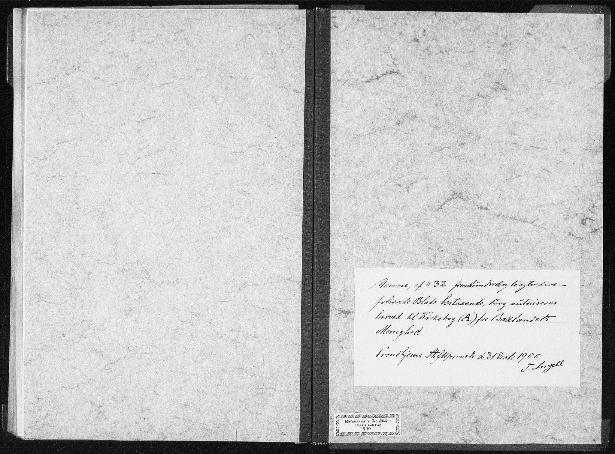 SAT, Ministerialprotokoller, klokkerbøker og fødselsregistre - Sør-Trøndelag, 604/L0199: Ministerialbok nr. 604A20I, 1901-1906, s. 243
