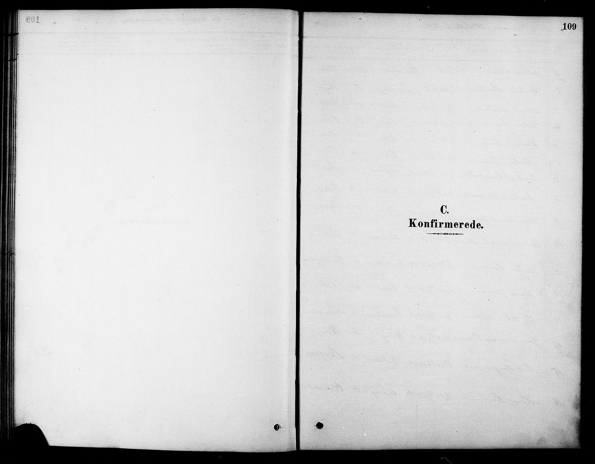 SAT, Ministerialprotokoller, klokkerbøker og fødselsregistre - Sør-Trøndelag, 658/L0722: Ministerialbok nr. 658A01, 1879-1896, s. 109
