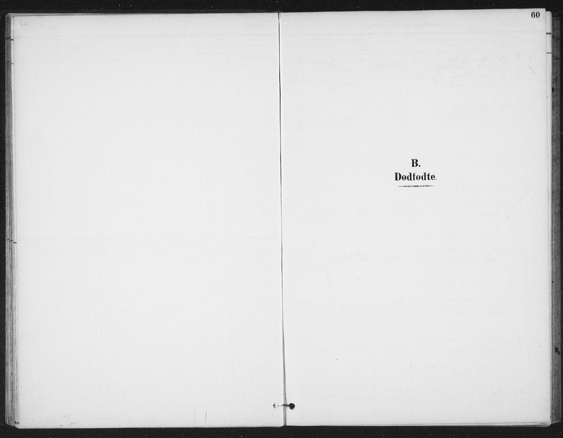 SAT, Ministerialprotokoller, klokkerbøker og fødselsregistre - Sør-Trøndelag, 657/L0708: Ministerialbok nr. 657A09, 1894-1904, s. 60