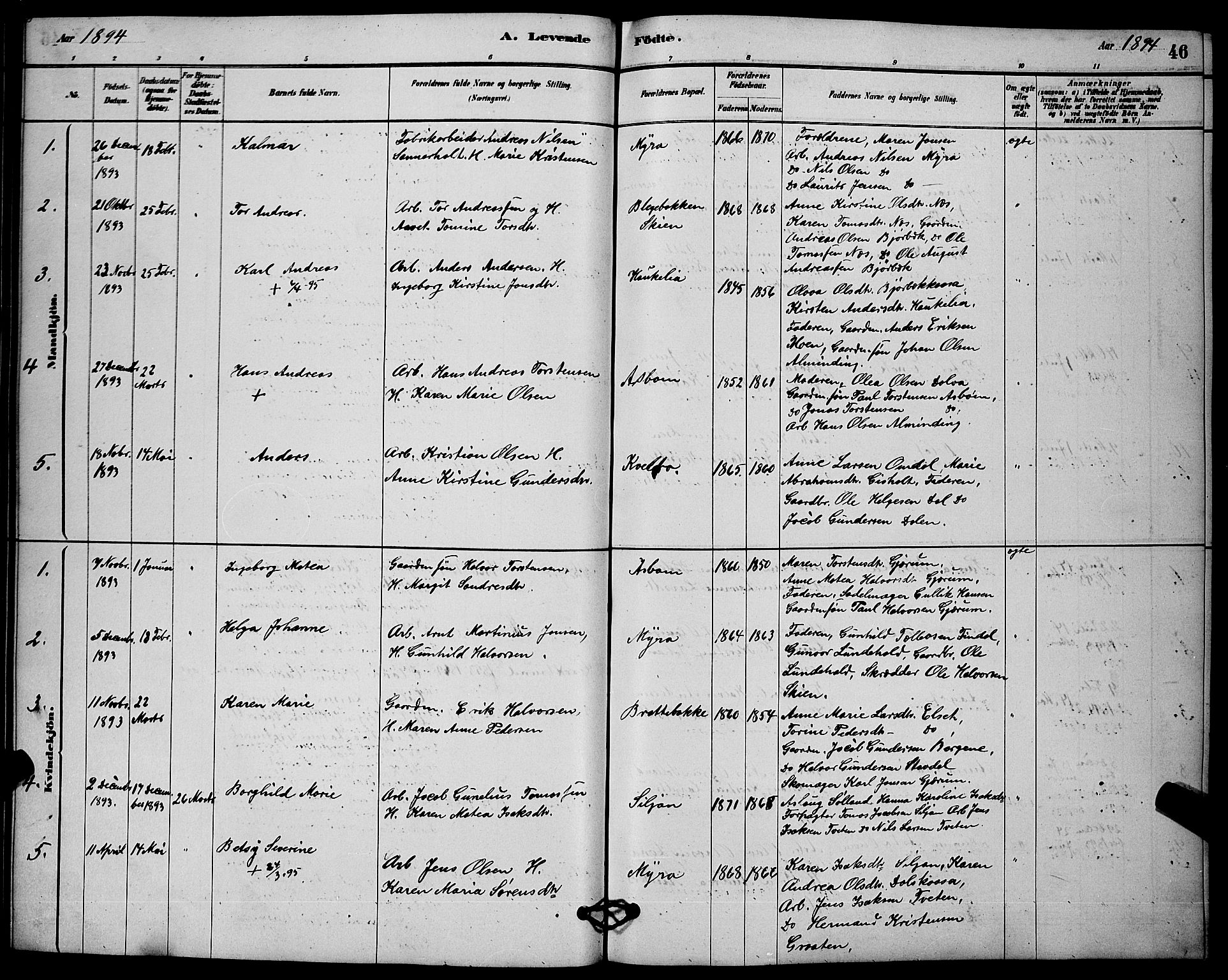 SAKO, Solum kirkebøker, G/Gb/L0003: Klokkerbok nr. II 3, 1880-1898, s. 46