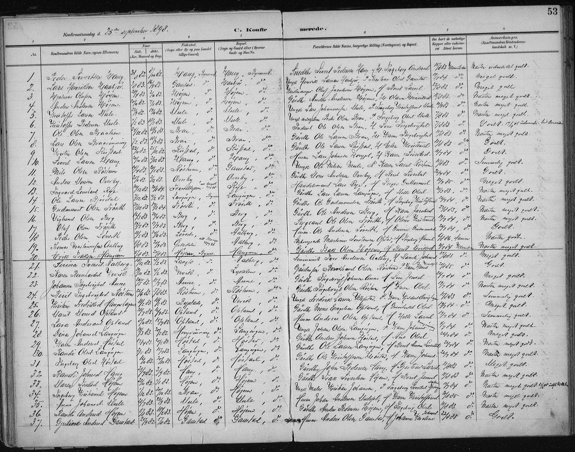 SAT, Ministerialprotokoller, klokkerbøker og fødselsregistre - Sør-Trøndelag, 612/L0380: Ministerialbok nr. 612A12, 1898-1907, s. 53