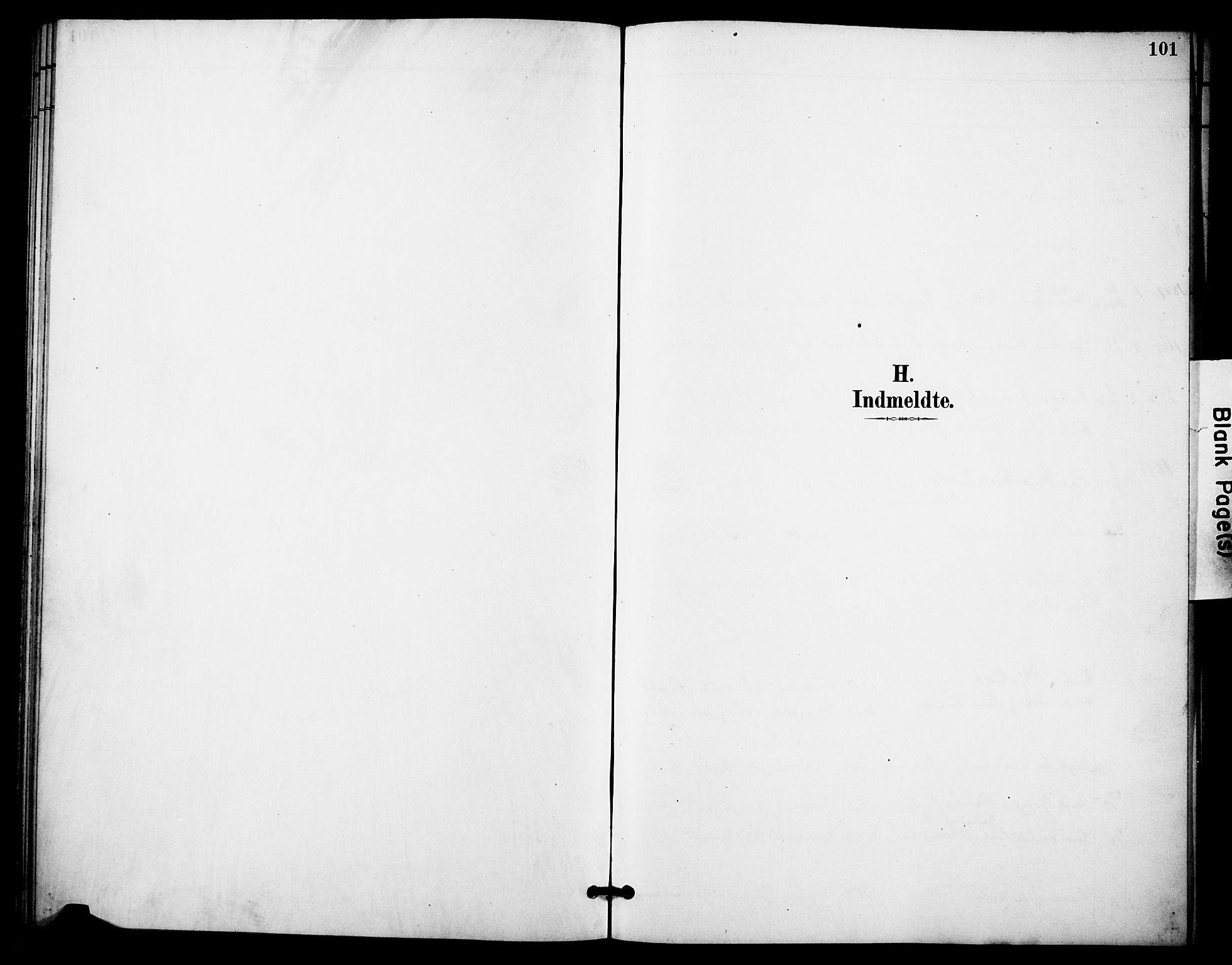SAKO, Skåtøy kirkebøker, F/Fa/L0004: Ministerialbok nr. I 4, 1884-1900, s. 101