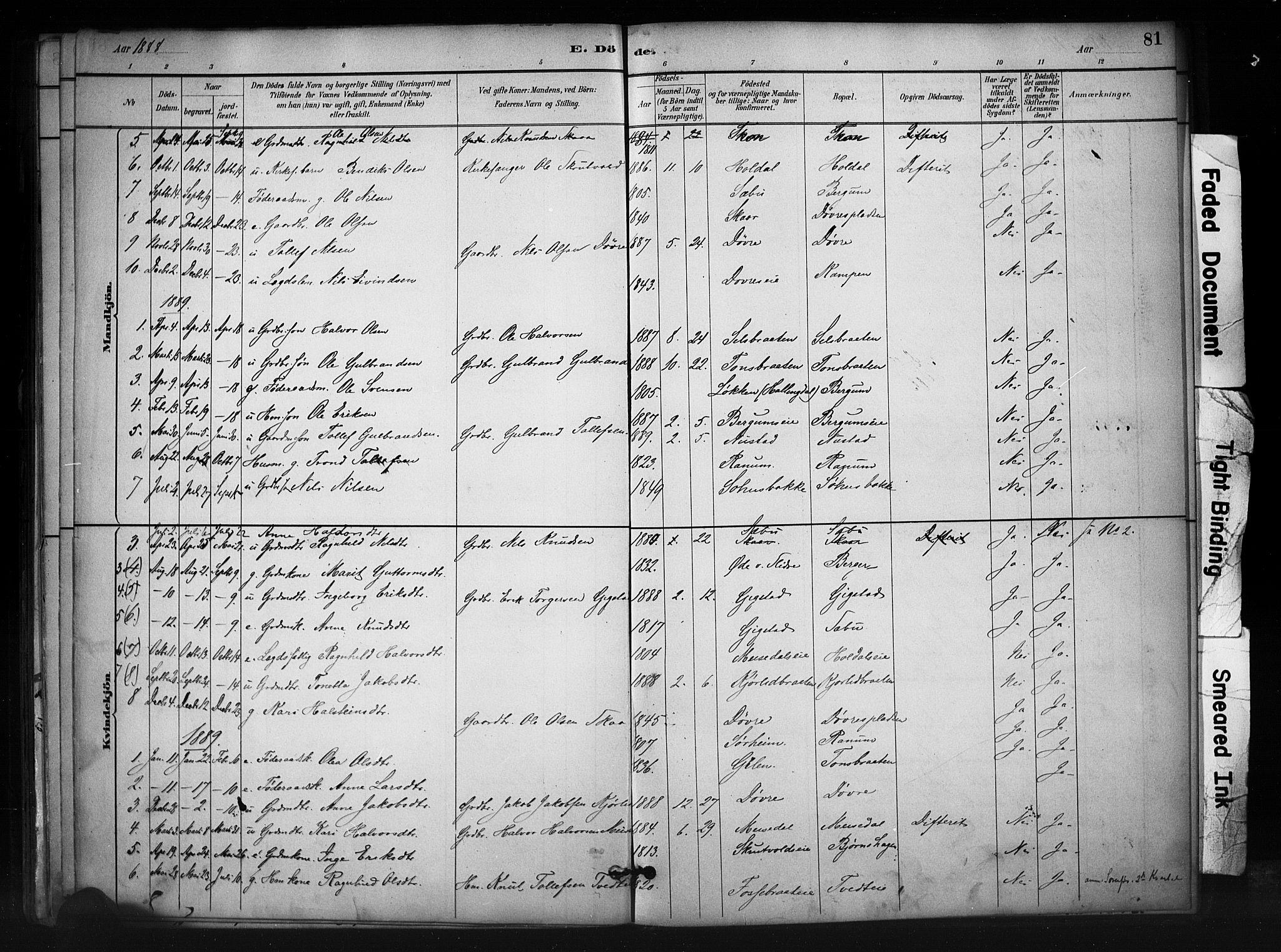 SAH, Nord-Aurdal prestekontor, Ministerialbok nr. 12, 1883-1895, s. 81
