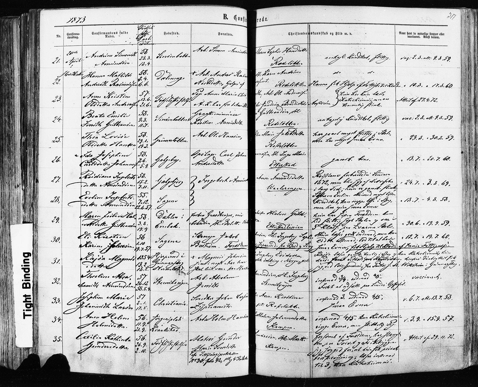 SAO, Østre Aker prestekontor Kirkebøker, F/Fa/L0003: Ministerialbok nr. I 3, 1869-1875, s. 317