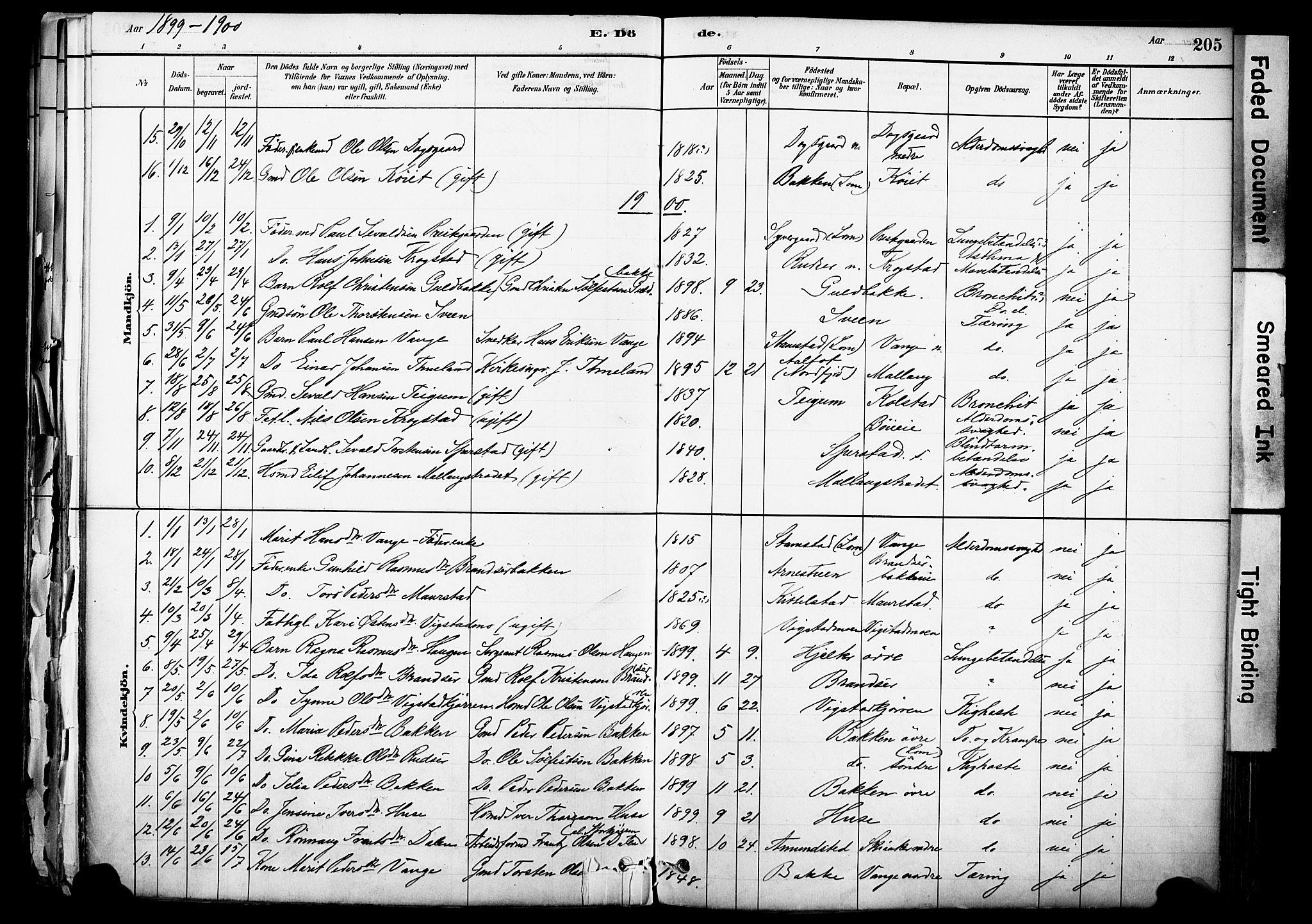 SAH, Skjåk prestekontor, Ministerialbok nr. 3, 1880-1907, s. 205