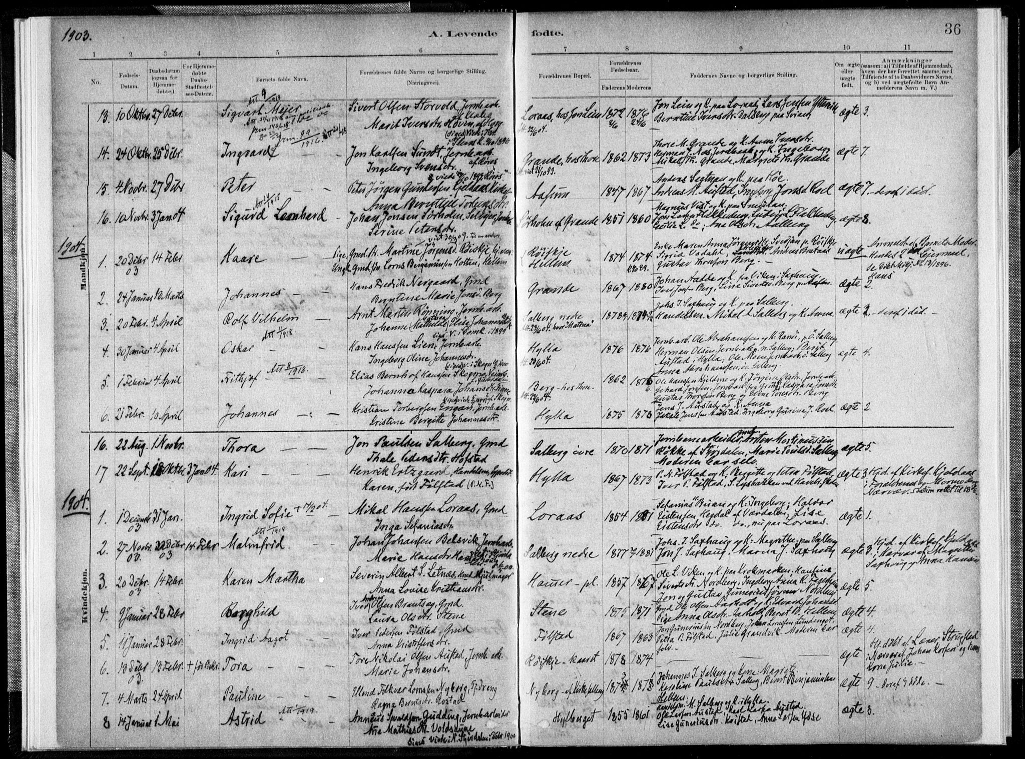 SAT, Ministerialprotokoller, klokkerbøker og fødselsregistre - Nord-Trøndelag, 731/L0309: Ministerialbok nr. 731A01, 1879-1918, s. 36