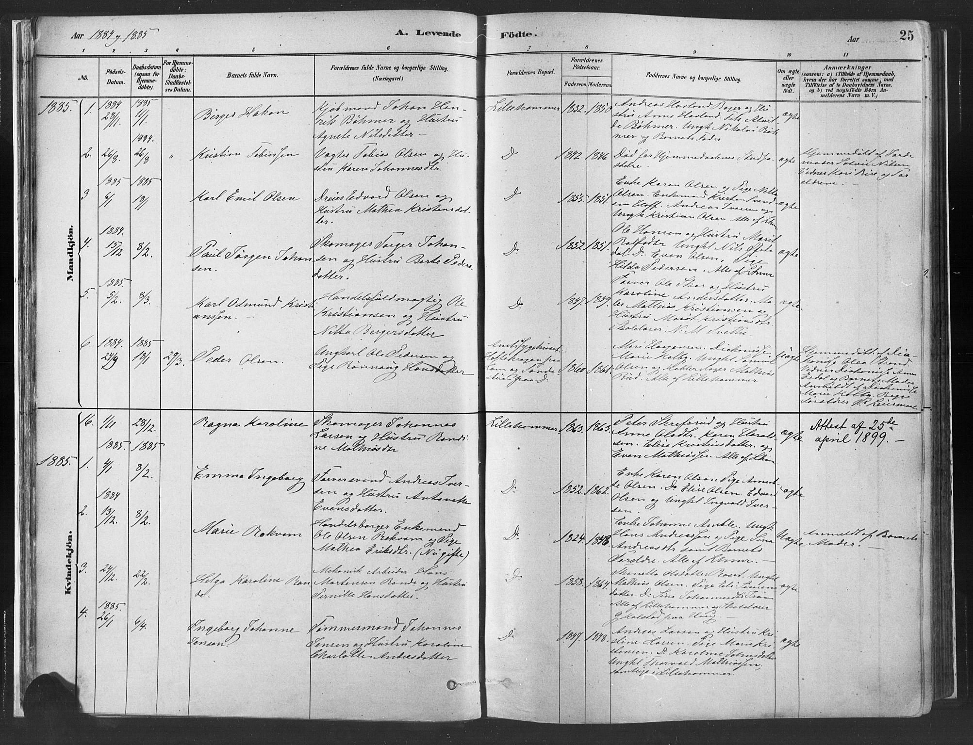 SAH, Fåberg prestekontor, Ministerialbok nr. 10, 1879-1900, s. 25