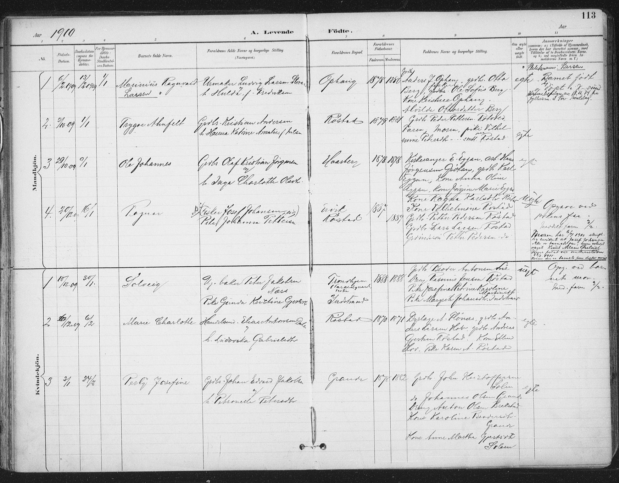 SAT, Ministerialprotokoller, klokkerbøker og fødselsregistre - Sør-Trøndelag, 659/L0743: Ministerialbok nr. 659A13, 1893-1910, s. 113