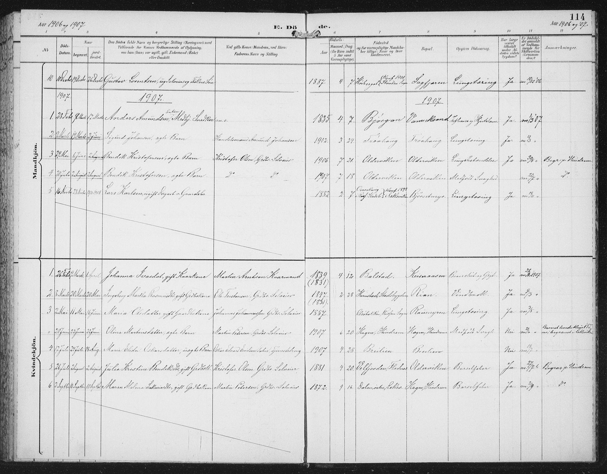 SAT, Ministerialprotokoller, klokkerbøker og fødselsregistre - Nord-Trøndelag, 702/L0024: Ministerialbok nr. 702A02, 1898-1914, s. 114