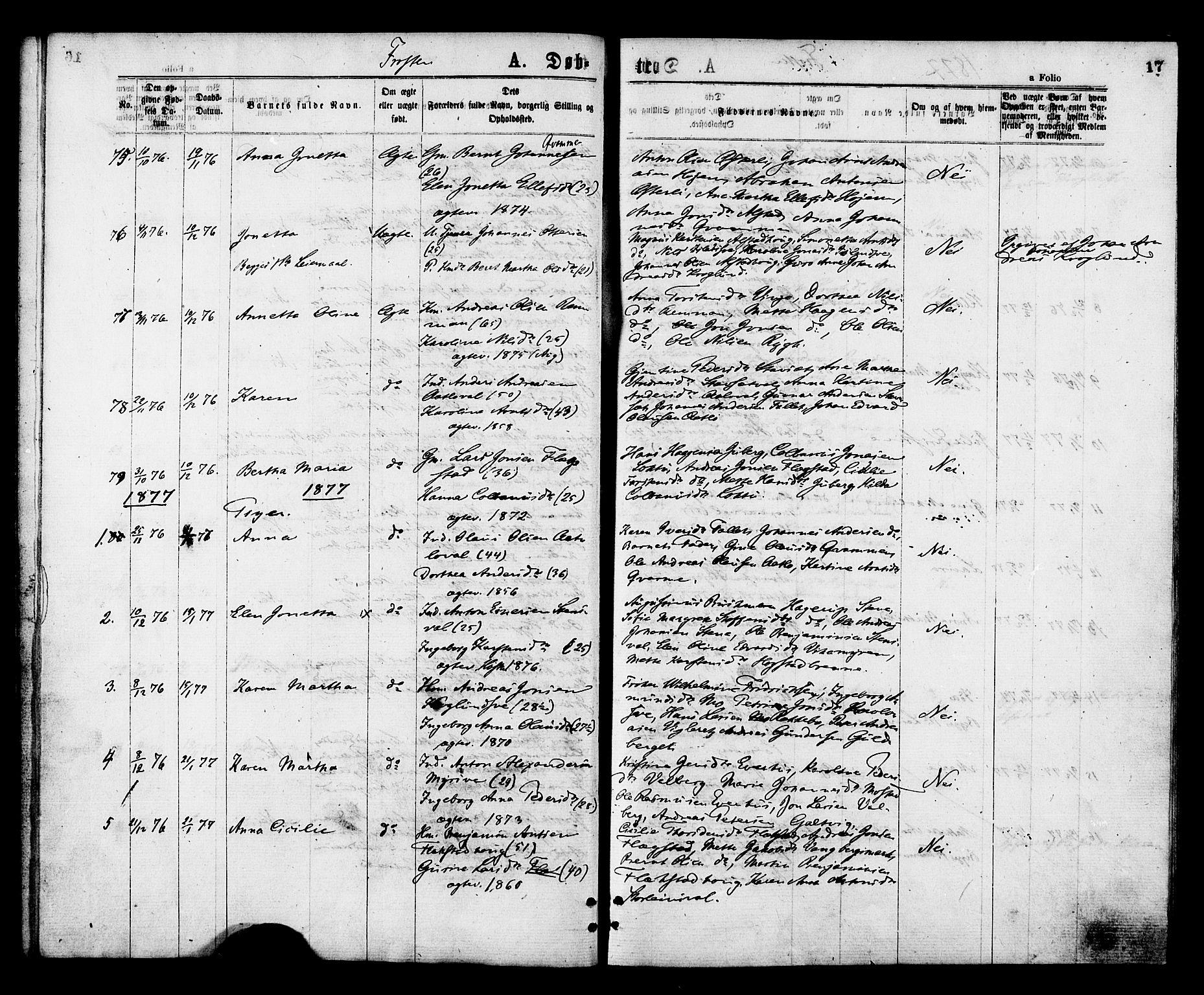 SAT, Ministerialprotokoller, klokkerbøker og fødselsregistre - Nord-Trøndelag, 713/L0118: Ministerialbok nr. 713A08 /1, 1875-1877, s. 17