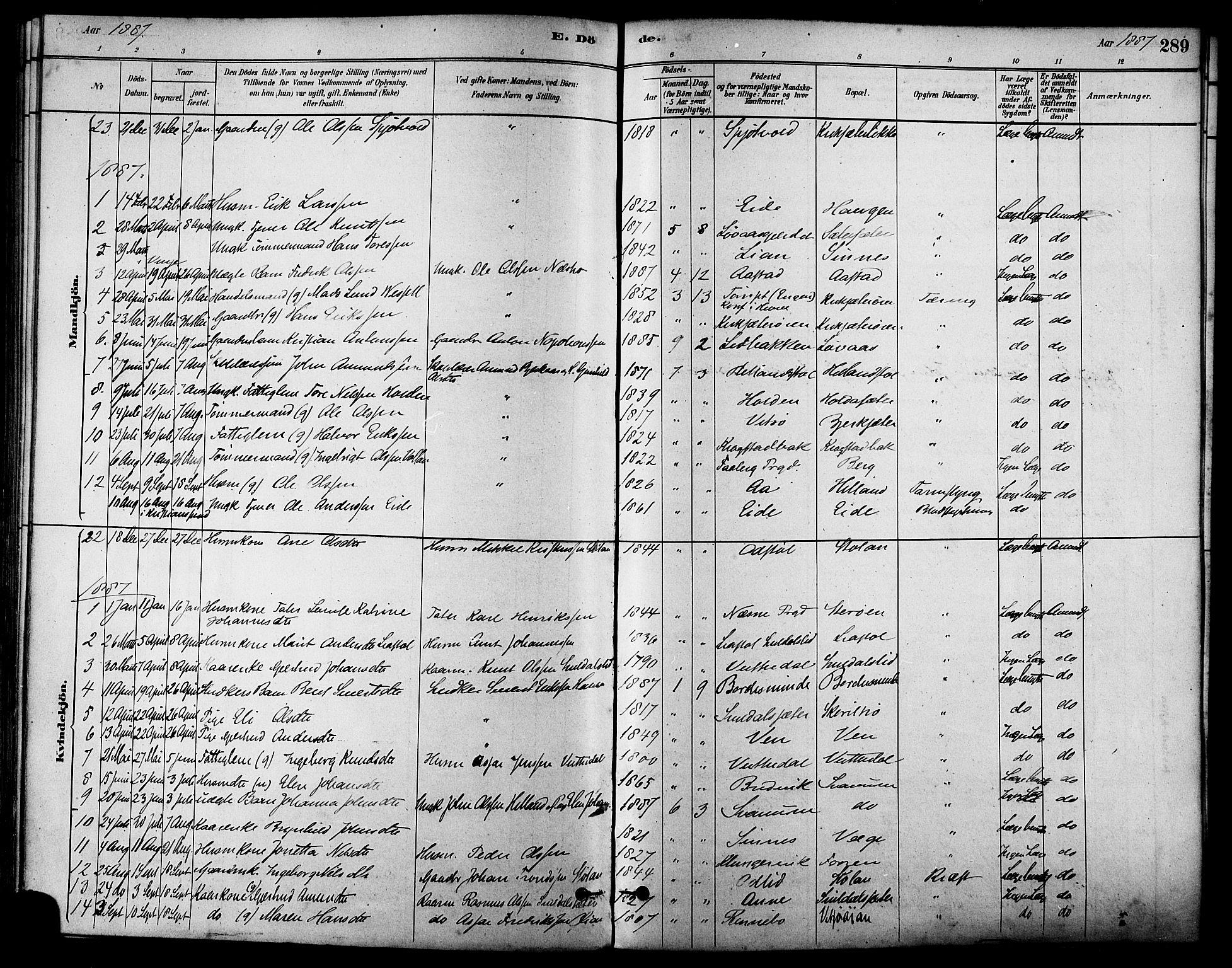SAT, Ministerialprotokoller, klokkerbøker og fødselsregistre - Sør-Trøndelag, 630/L0496: Ministerialbok nr. 630A09, 1879-1895, s. 289