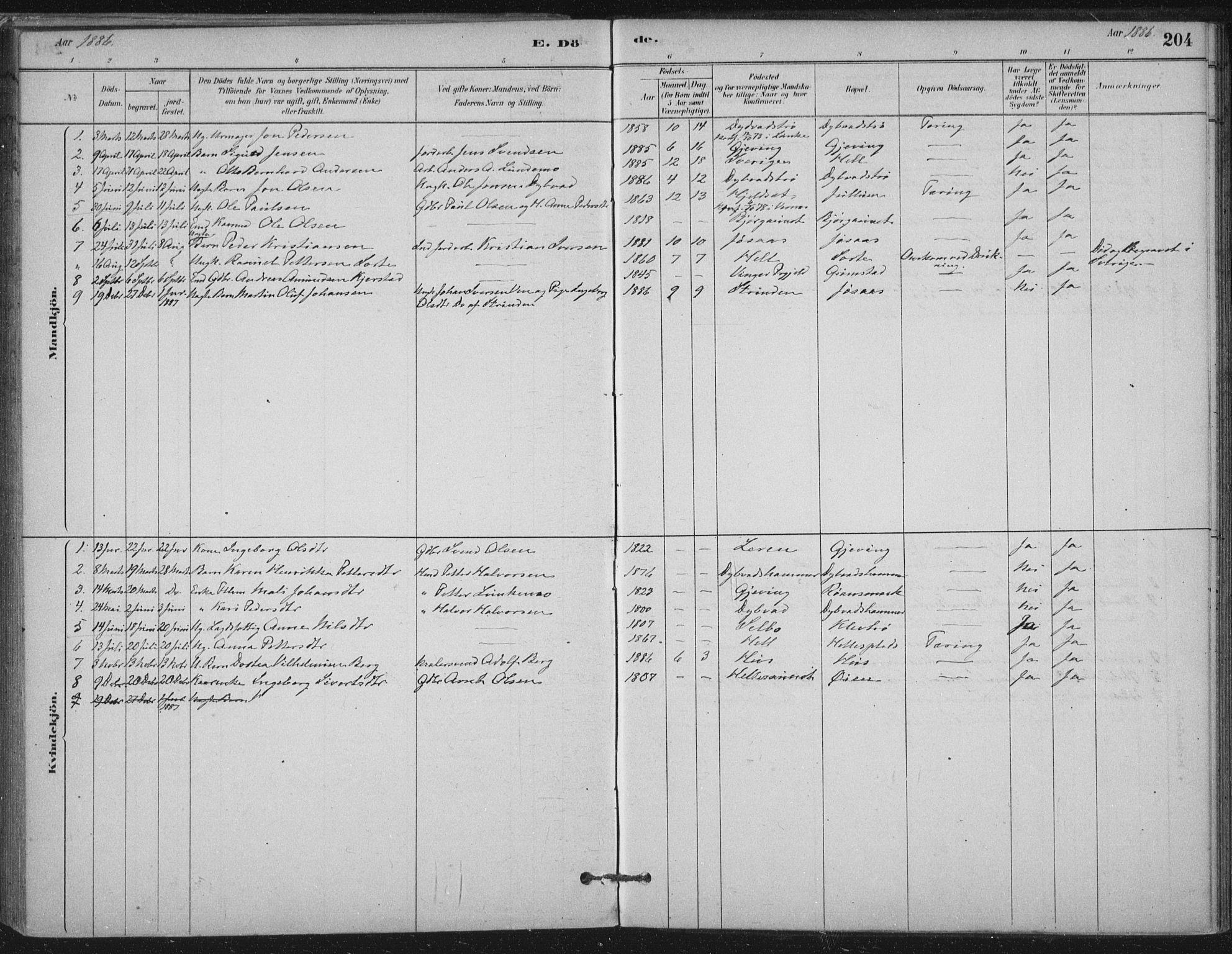 SAT, Ministerialprotokoller, klokkerbøker og fødselsregistre - Nord-Trøndelag, 710/L0095: Ministerialbok nr. 710A01, 1880-1914, s. 204