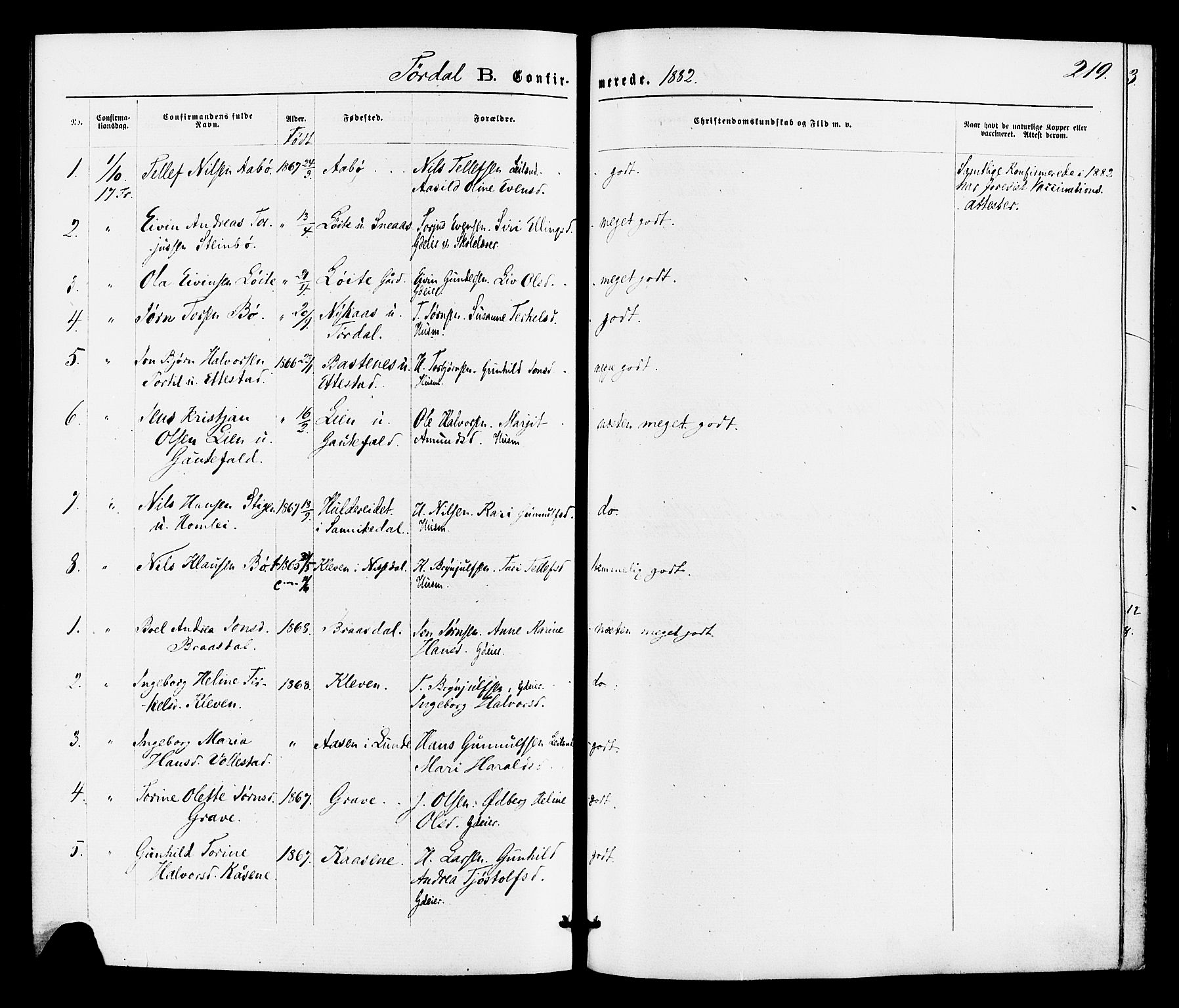SAKO, Drangedal kirkebøker, F/Fa/L0009: Ministerialbok nr. 9 /2, 1872-1884, s. 219