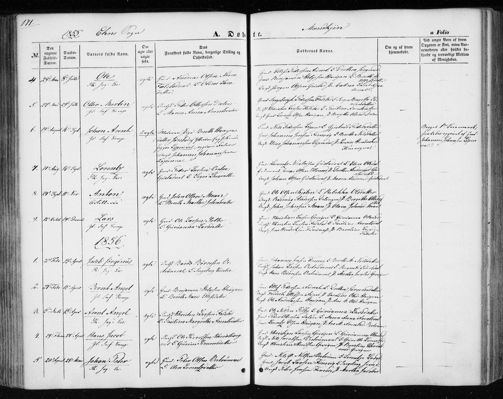 SAT, Ministerialprotokoller, klokkerbøker og fødselsregistre - Nord-Trøndelag, 717/L0154: Ministerialbok nr. 717A07 /3, 1850-1862, s. 171