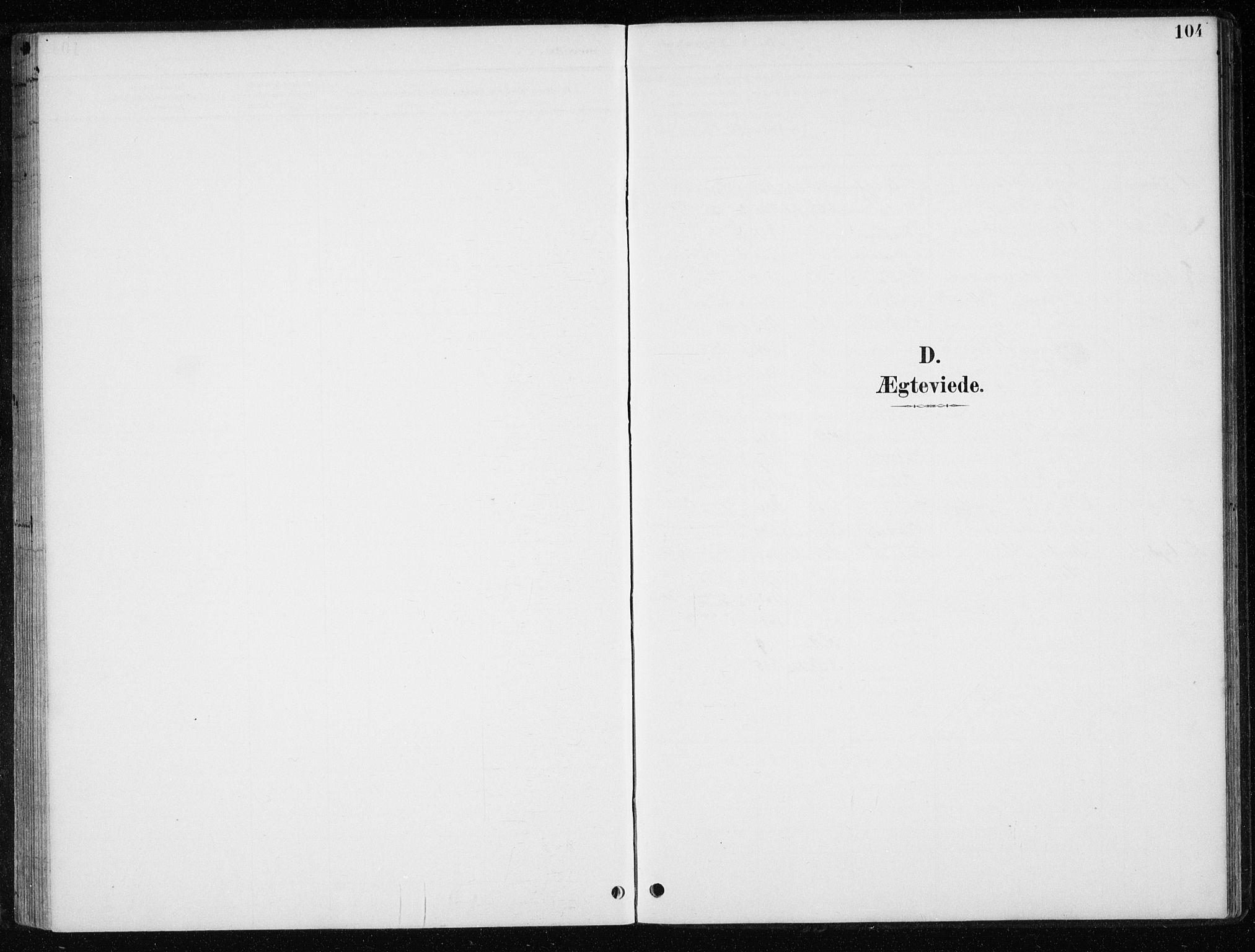 SAT, Ministerialprotokoller, klokkerbøker og fødselsregistre - Nord-Trøndelag, 710/L0096: Klokkerbok nr. 710C01, 1892-1925, s. 104