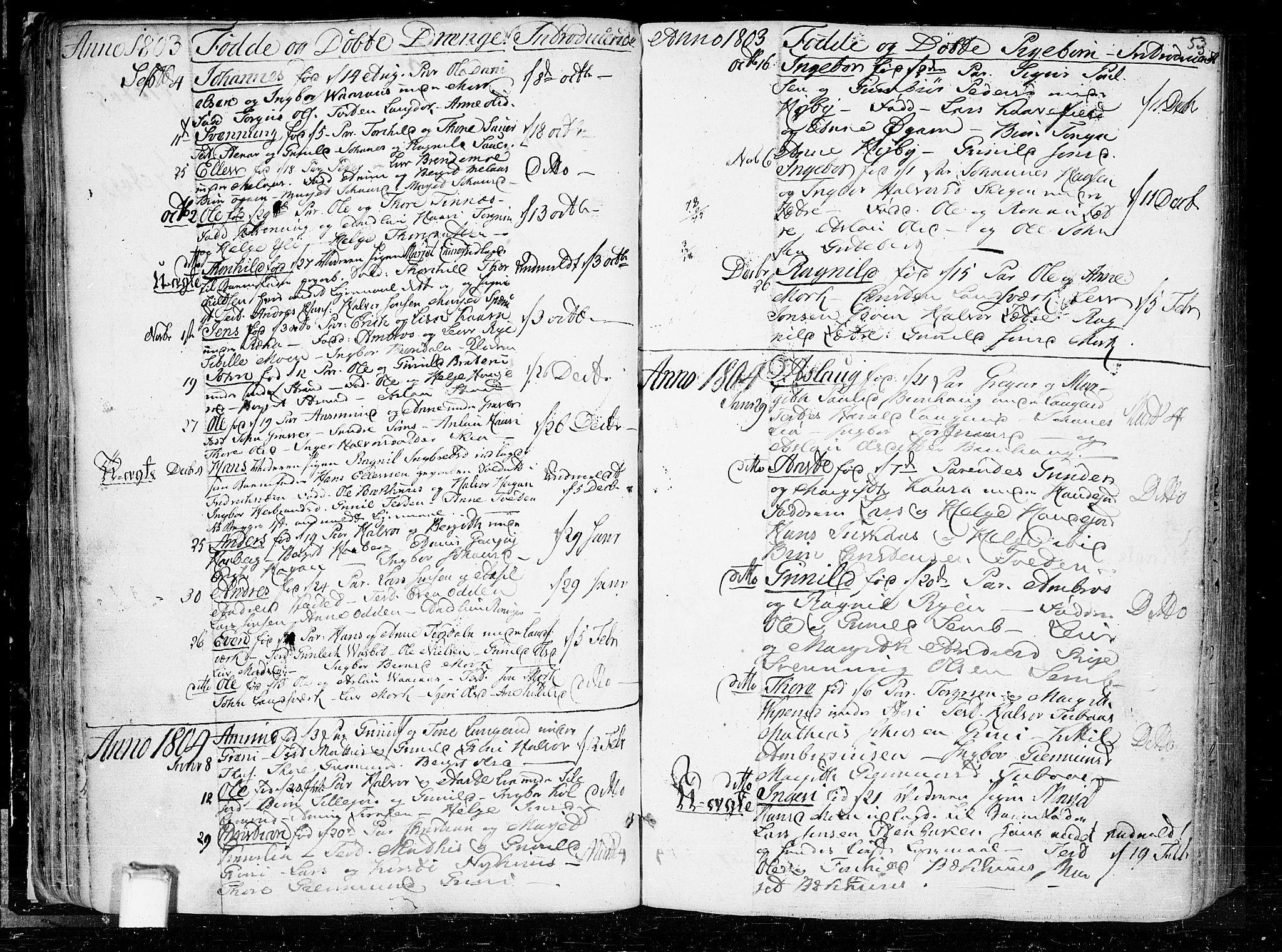 SAKO, Heddal kirkebøker, F/Fa/L0004: Ministerialbok nr. I 4, 1784-1814, s. 53