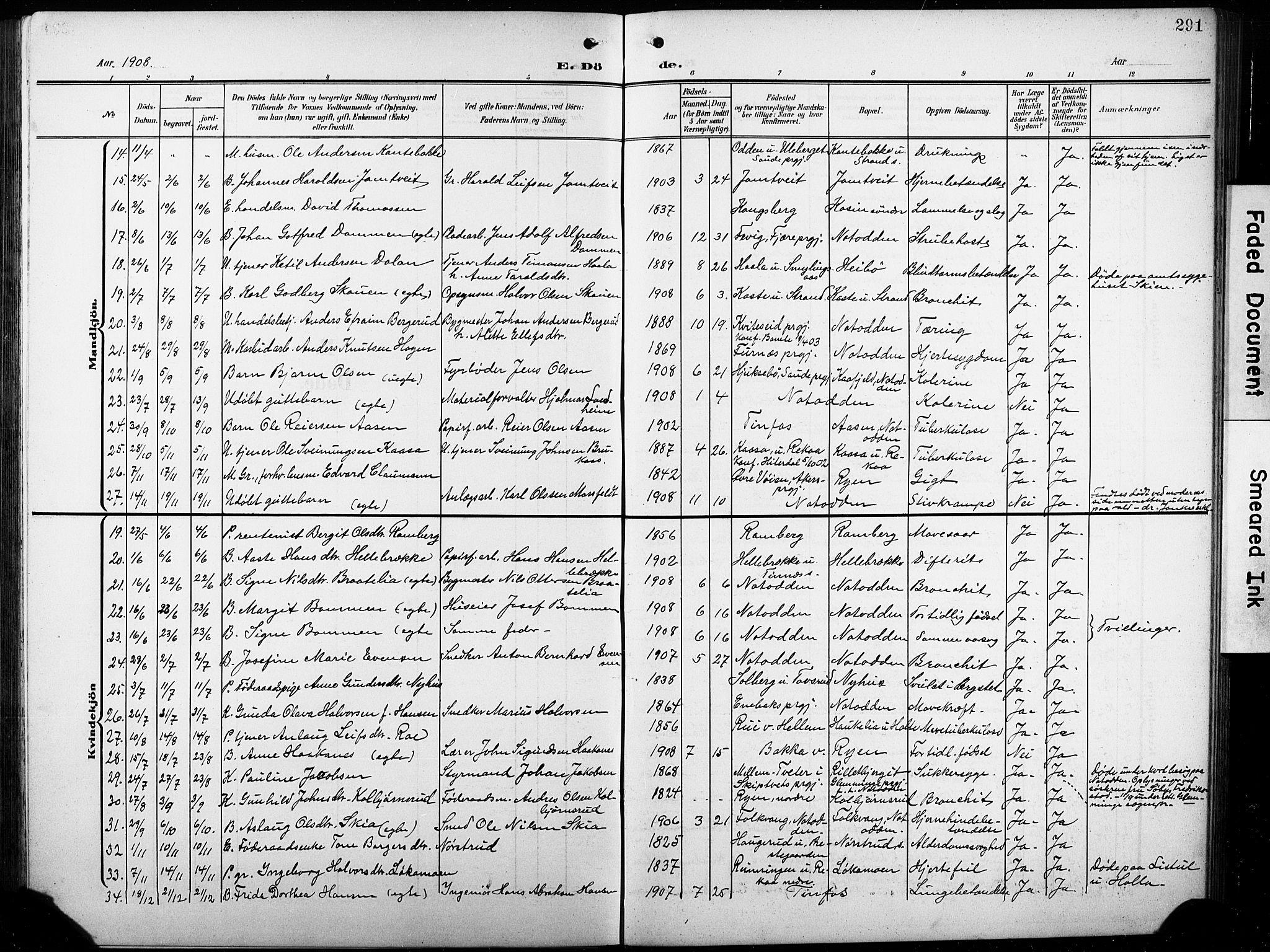 SAKO, Heddal kirkebøker, G/Ga/L0003: Klokkerbok nr. I 3, 1908-1932, s. 291